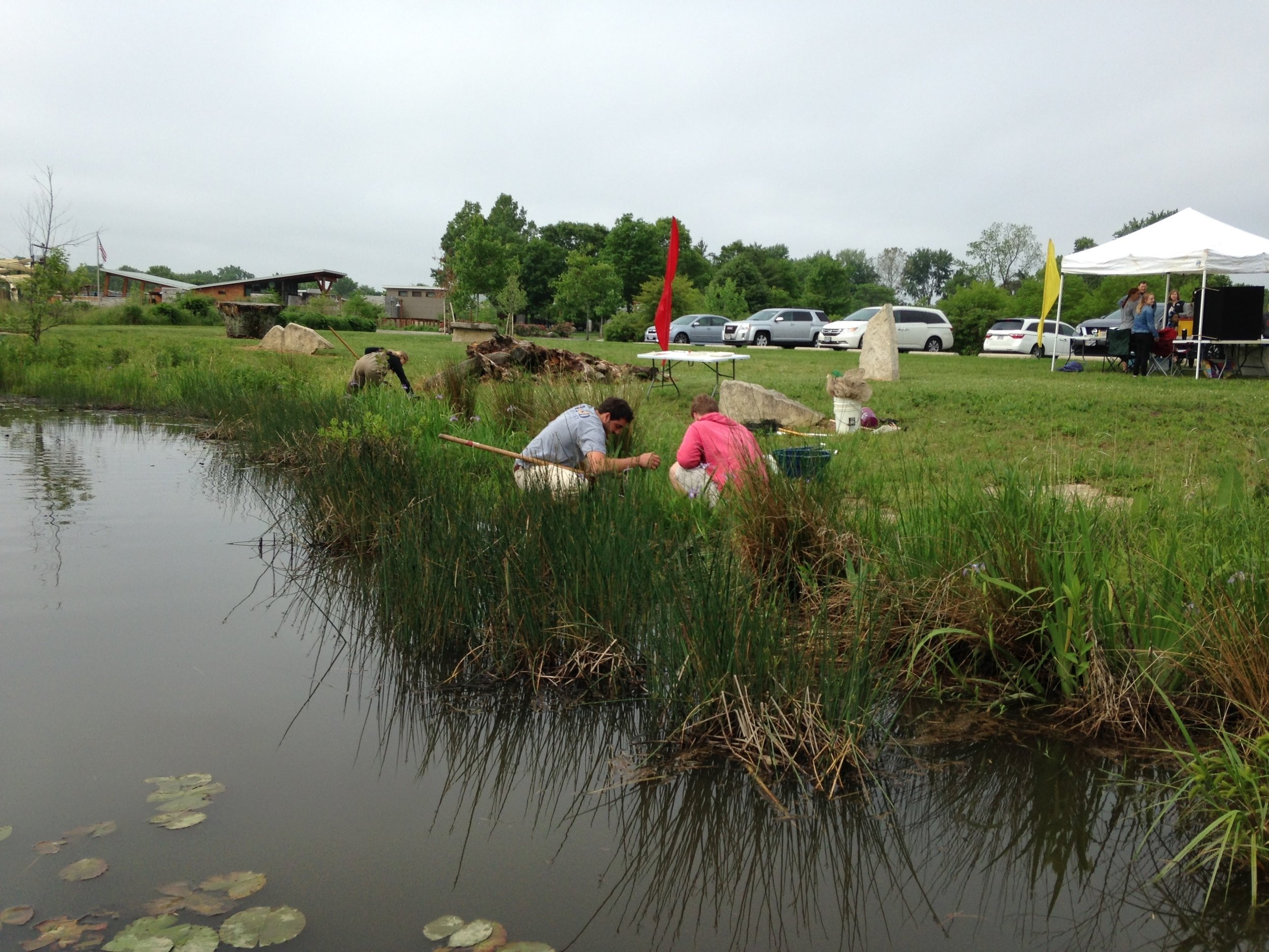 MADScientistAssoc-WetlandWorkshop2017-27