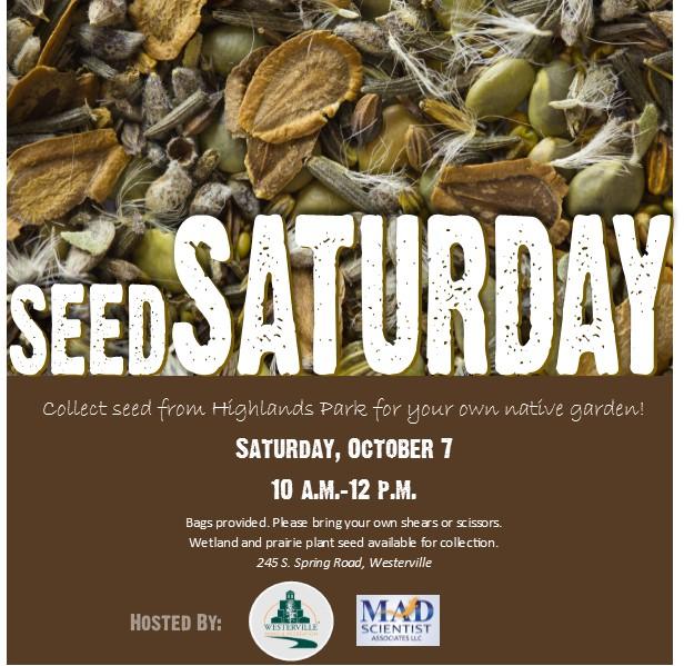 MADScientistAssoc_Seed_Saturday.jpg