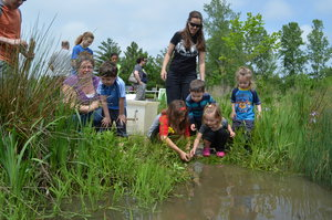MAD_WetlandWeekend_2017-26.jpg