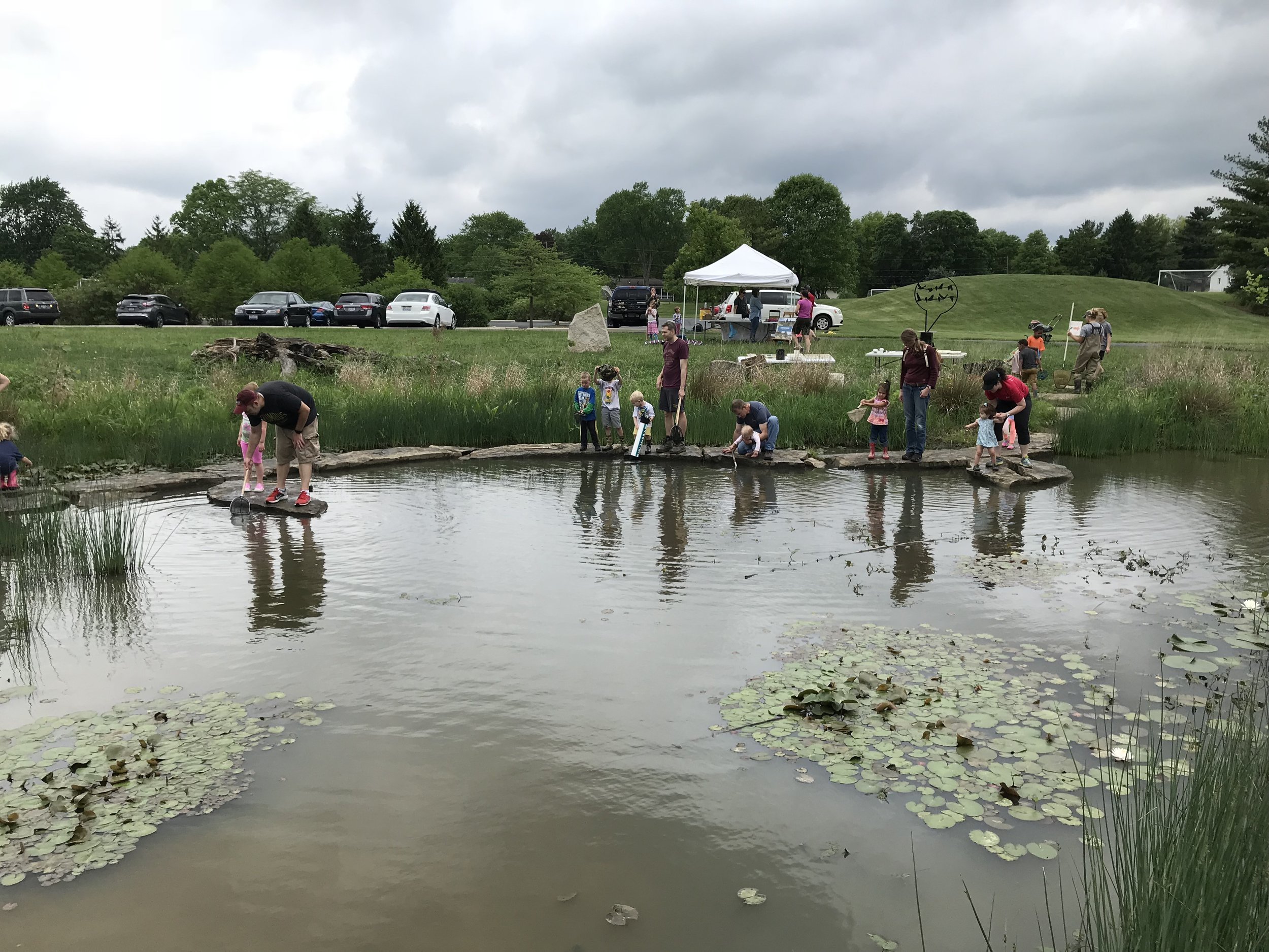 Westerville Wetland Workshop