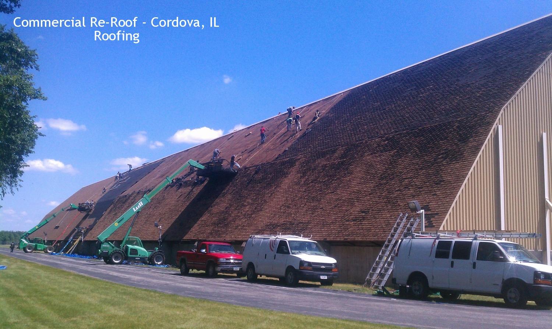 Growmark-Roof.jpg