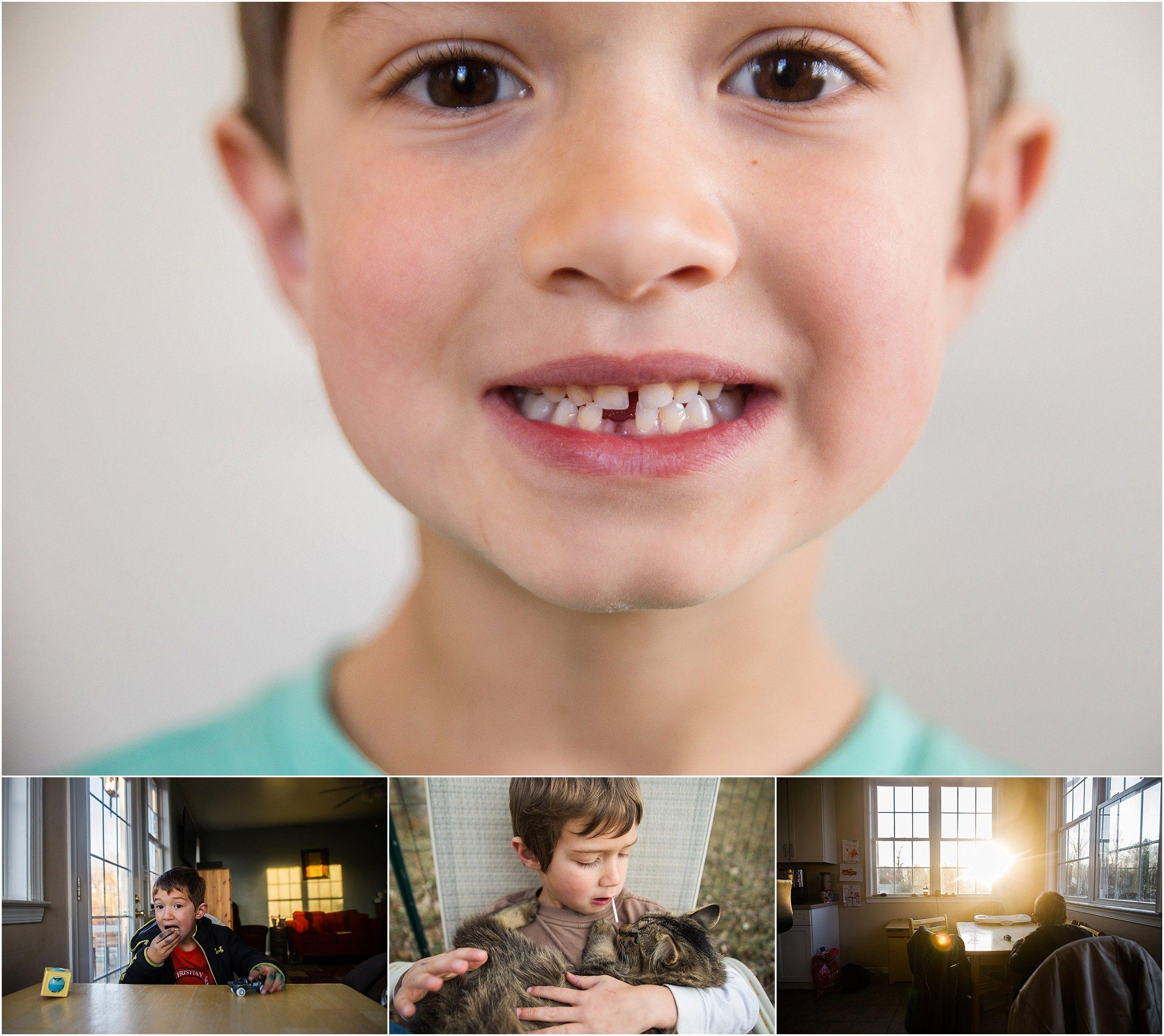 lost tooth kitten boy Holli Pool Photography Stuarts Draft Virginia