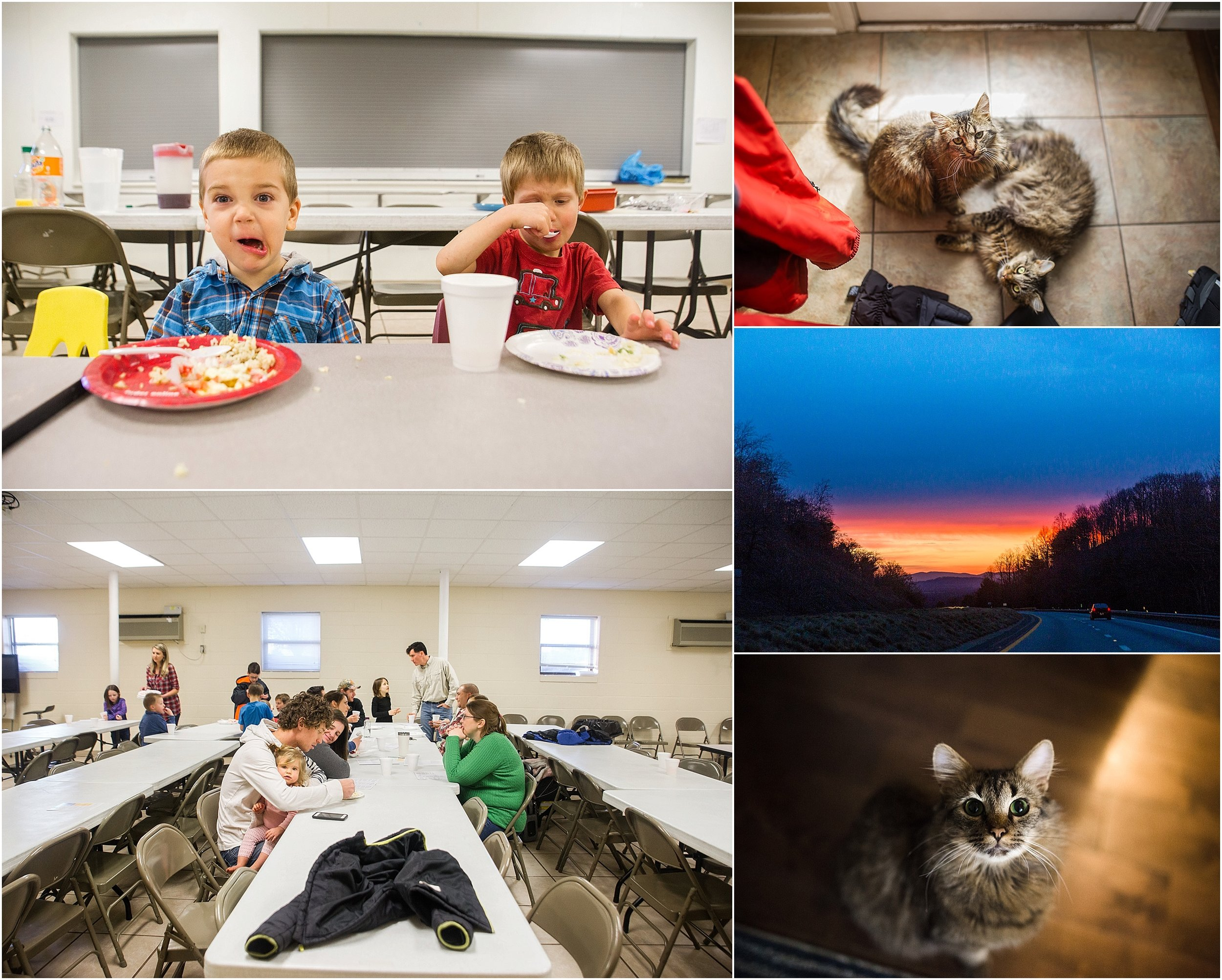 family photographer, Staunton, Waynesboro, Fishersville, Blue Ridge Mountains, kittens, cousins