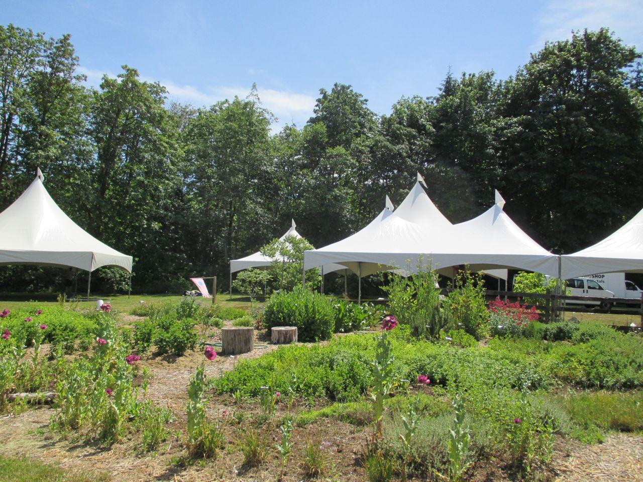 big tents.jpg