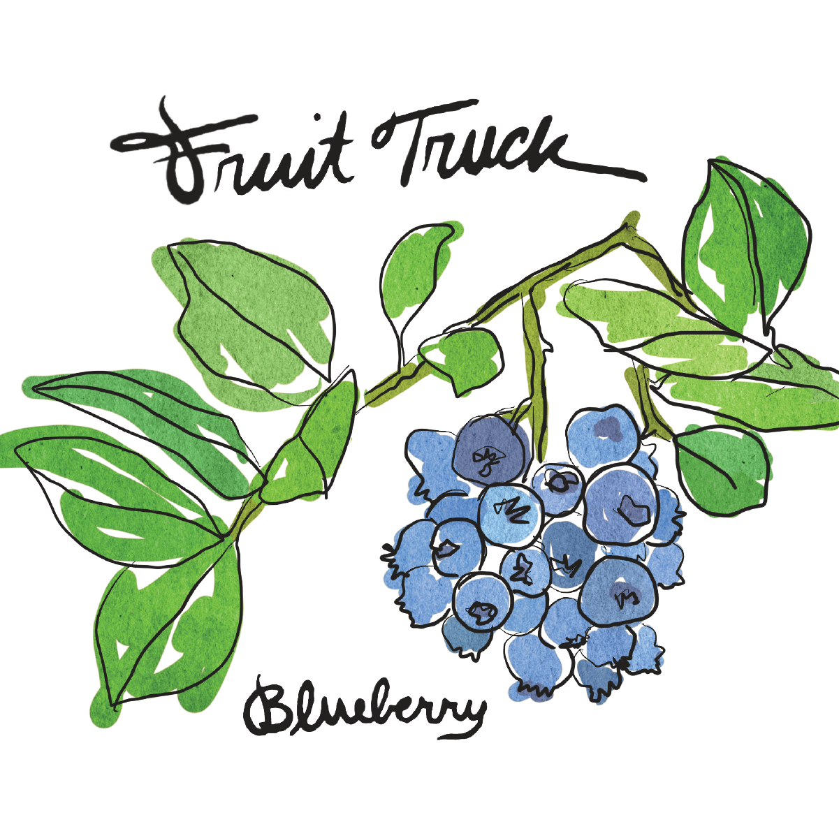 Fruit Truck Blueberry-web-01.png