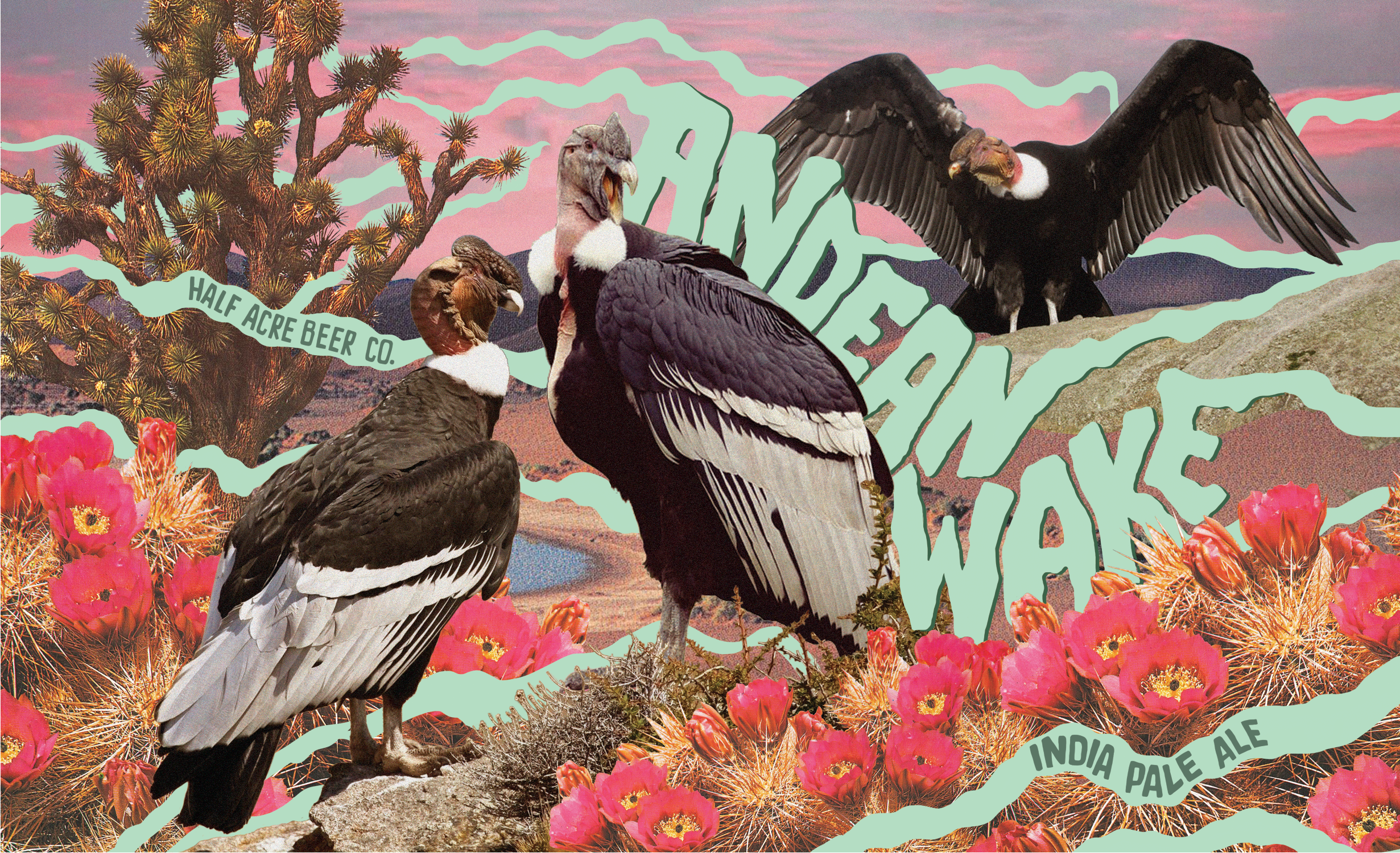 andean_wake_web.png