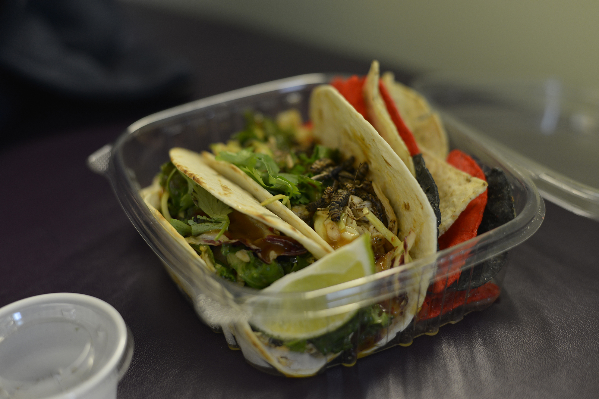 The Food for Thought food truck offers crickets as a side to their tacos. (Photo by Jason Jiang/The Daily Campus)