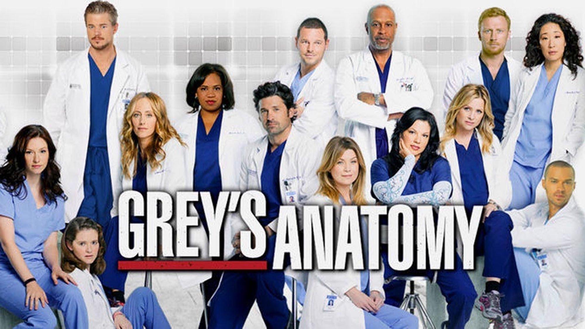 Greys Anatomy 13