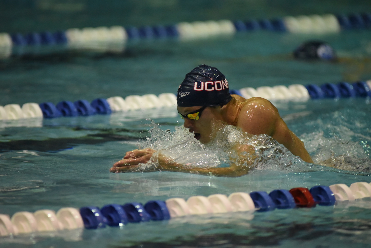 The UConn Swim Team ended the regular season with their annual Husky Open in Wolff Zackin Natatorium. Boston College, SCSU, Boston University, and the US Coast Guard Academy attended the meet. (Charlotte Lao/The Daily Campus)