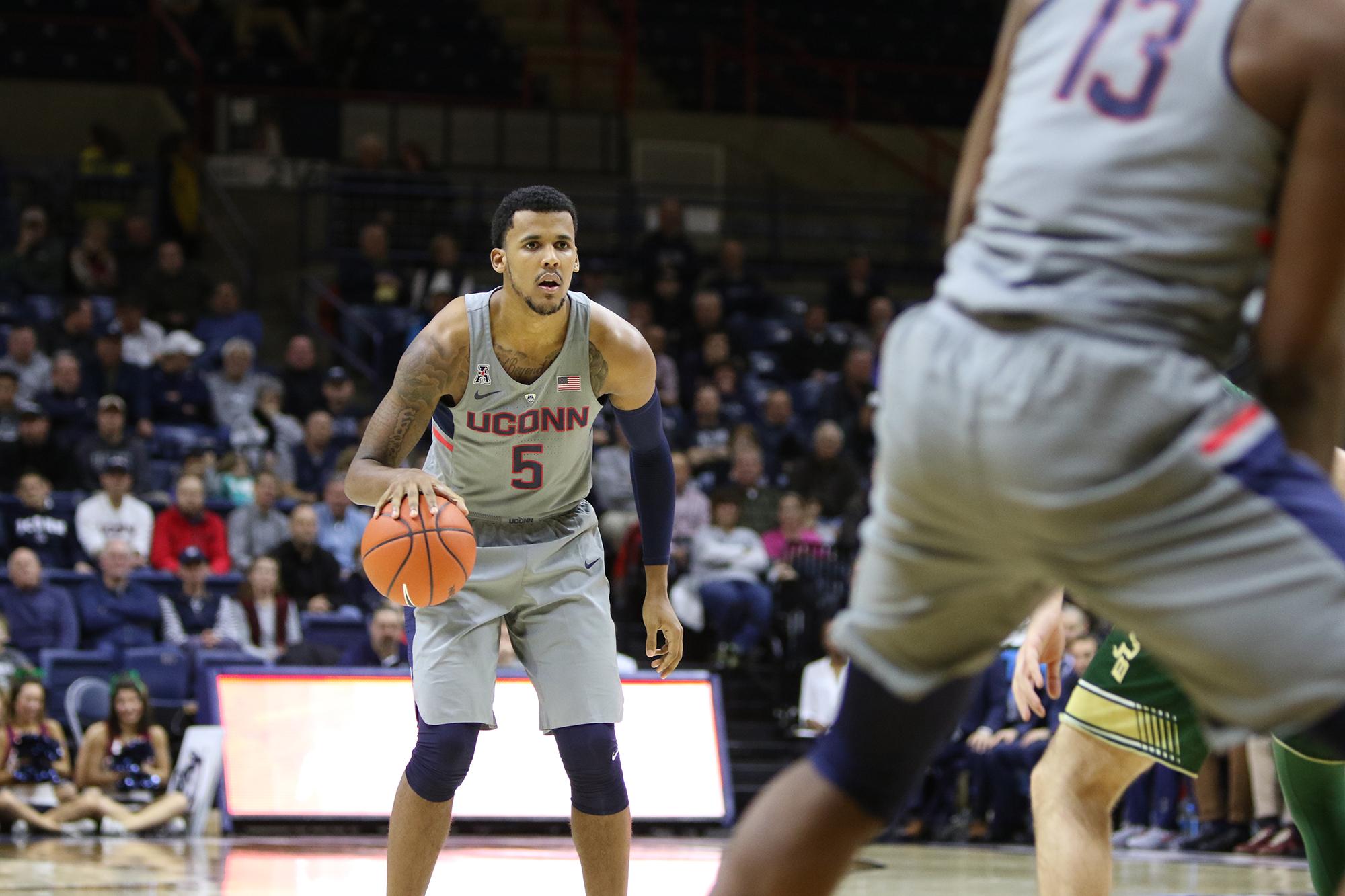The UConn men's basketball team defeated USF 97-51 on Wednesday, Feb. 8, 2017  at Gampel Pavilion. Wednesday night, the Huskies suffered a close loss to Houston 70-75.  (Jackson Haigis/ The Daily Campus)