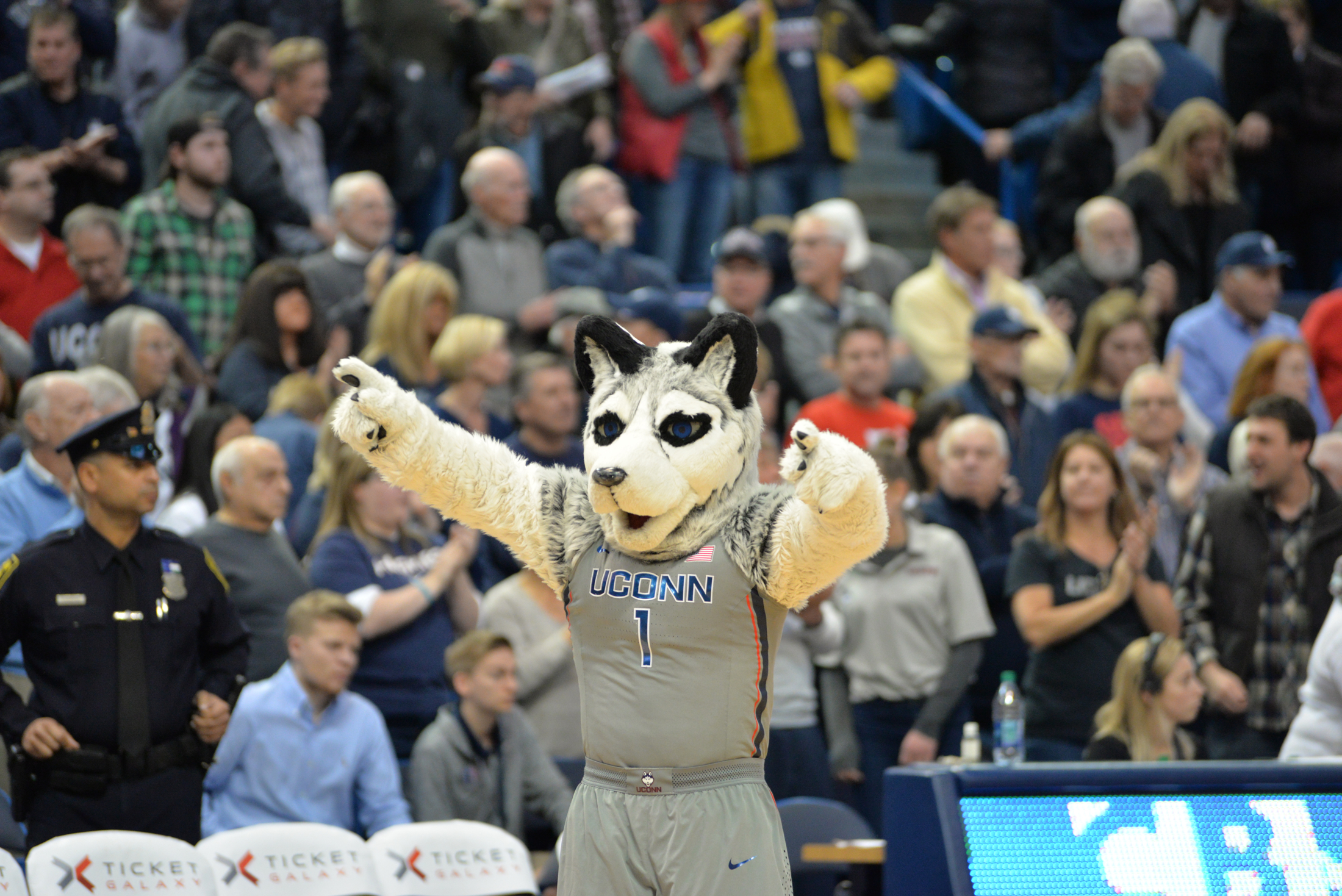 Jonathan the Husky celebrates as the Huskies improve their record to 7-0. (Amar Batra/The Daily Campus)