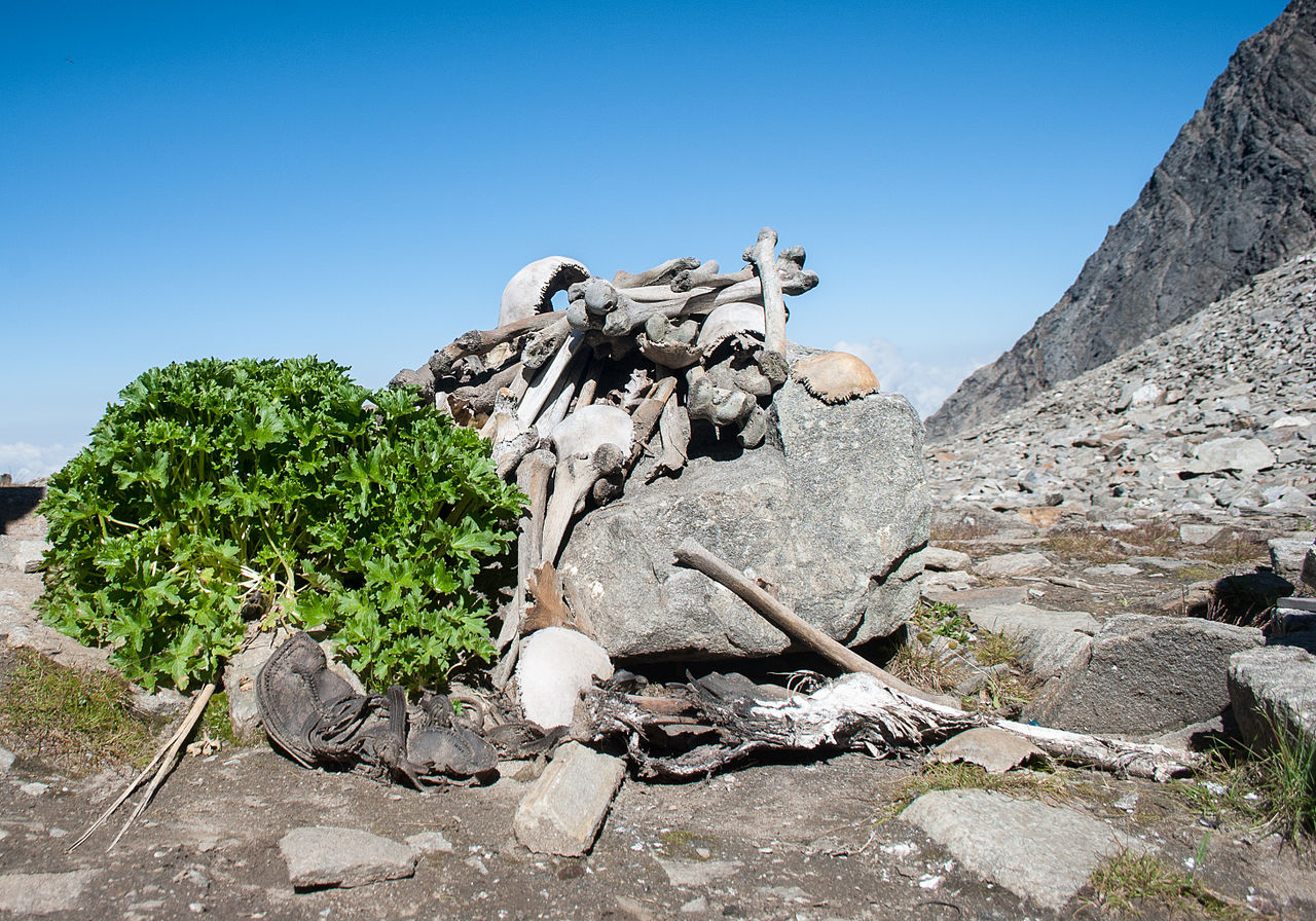 Human skeletons in Roopkund Lake. (Schwiki/Wikimedia Creative Commons)