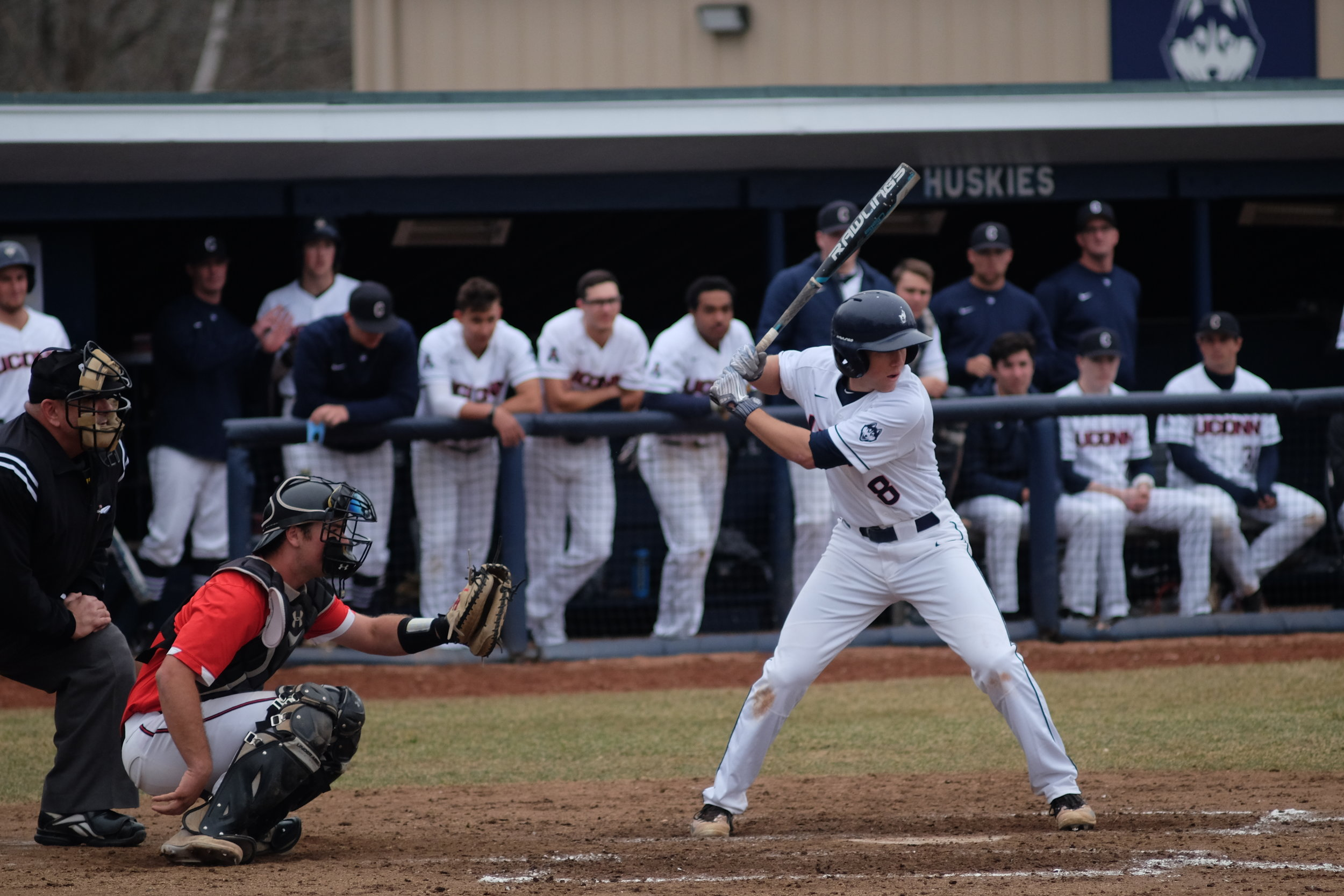 The Huskies are right back at J.O. Christian Field tomorrow for a 3 p.m. tilt against CCSU. (Jon Sammis/The Daily Campus)