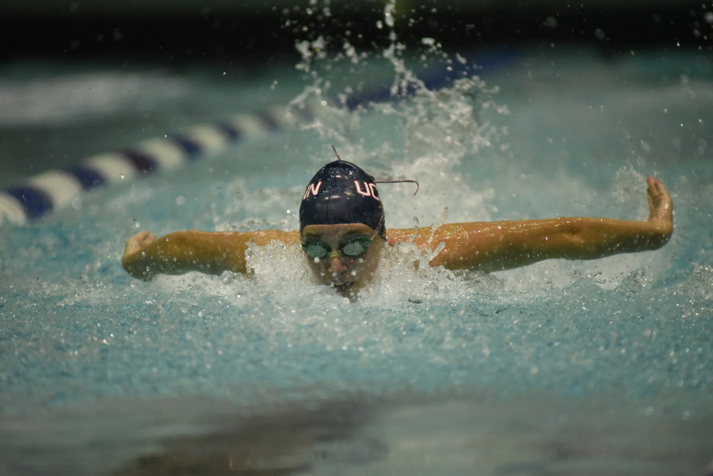 FILE- UConn Swimming and Diving is back in Storrs after a long offseason. (Charlotte Lao/ The Daily Campus)