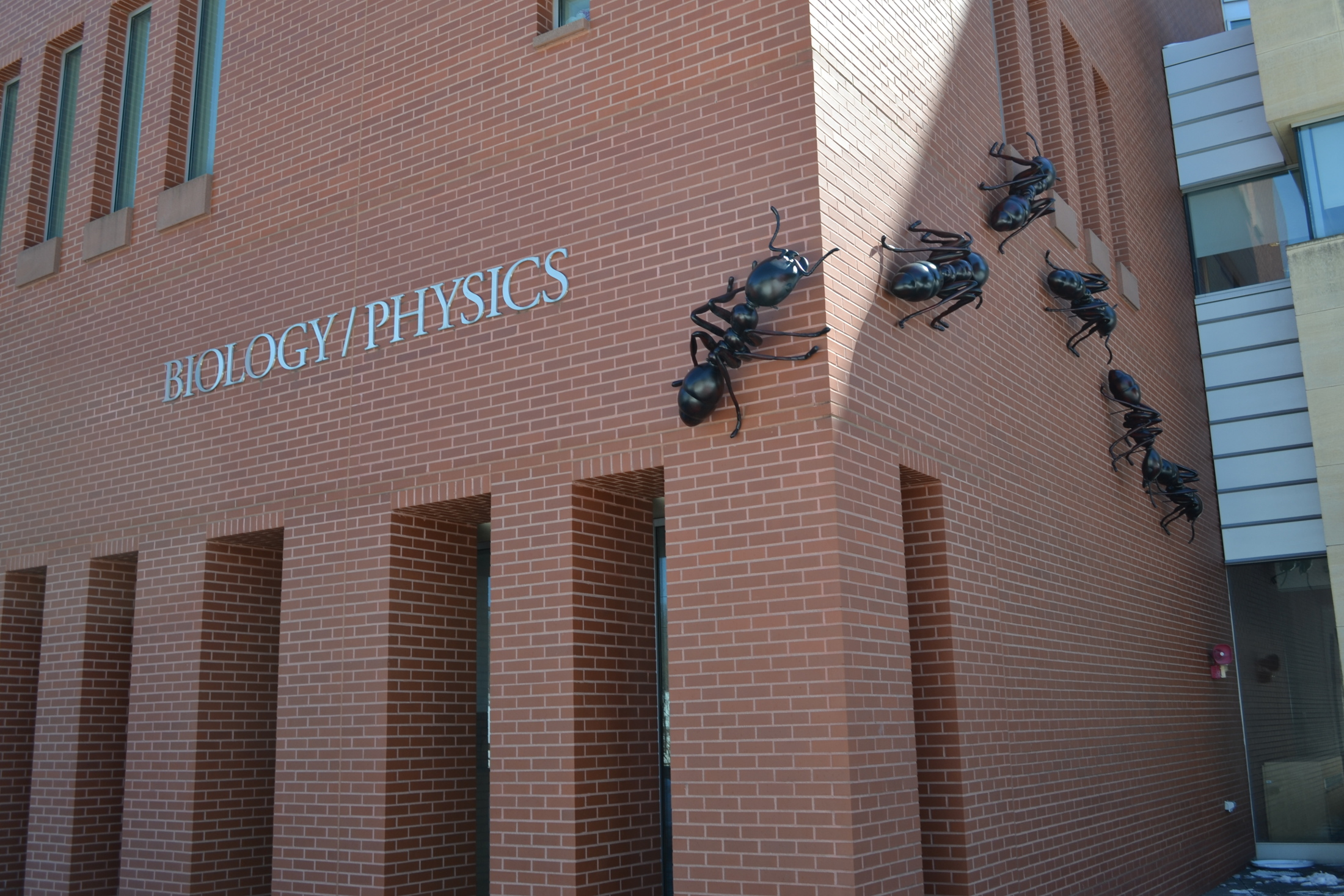 The UConn physics department made some beneficial changes recently (File Photo/The Daily Campus)