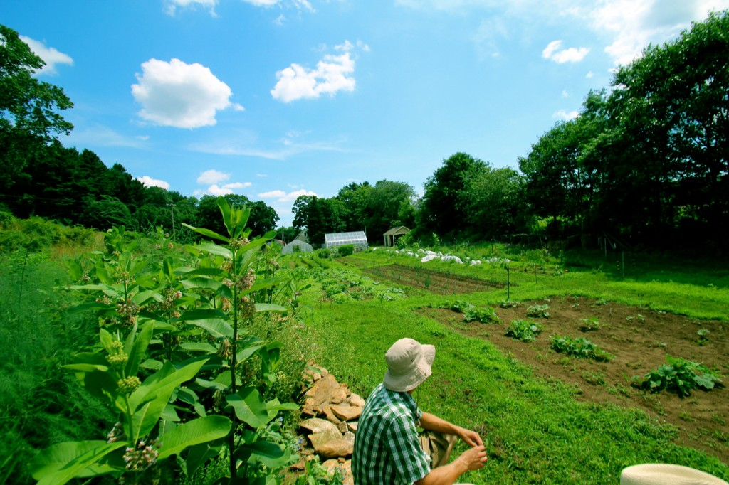 Spring Valley Farm is situated 4.5 miles off campus in rural Storrs. ( gzm04001 / UConn.edu )