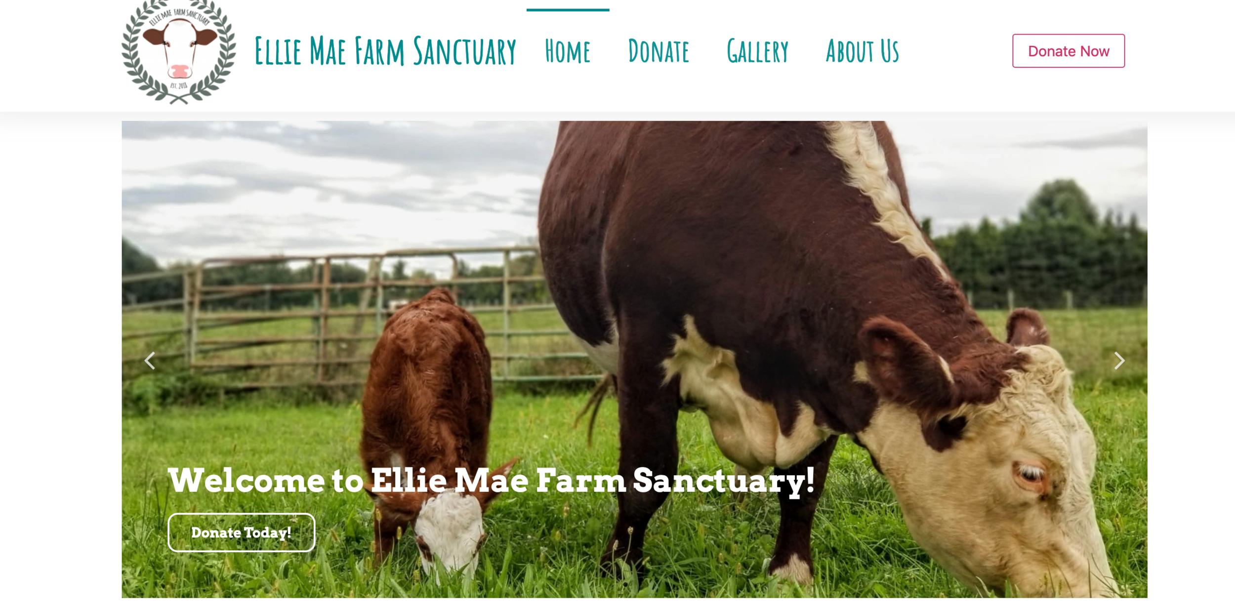 Alum-run Ellie Mae Farm Sanctuary hopes to rescue farm