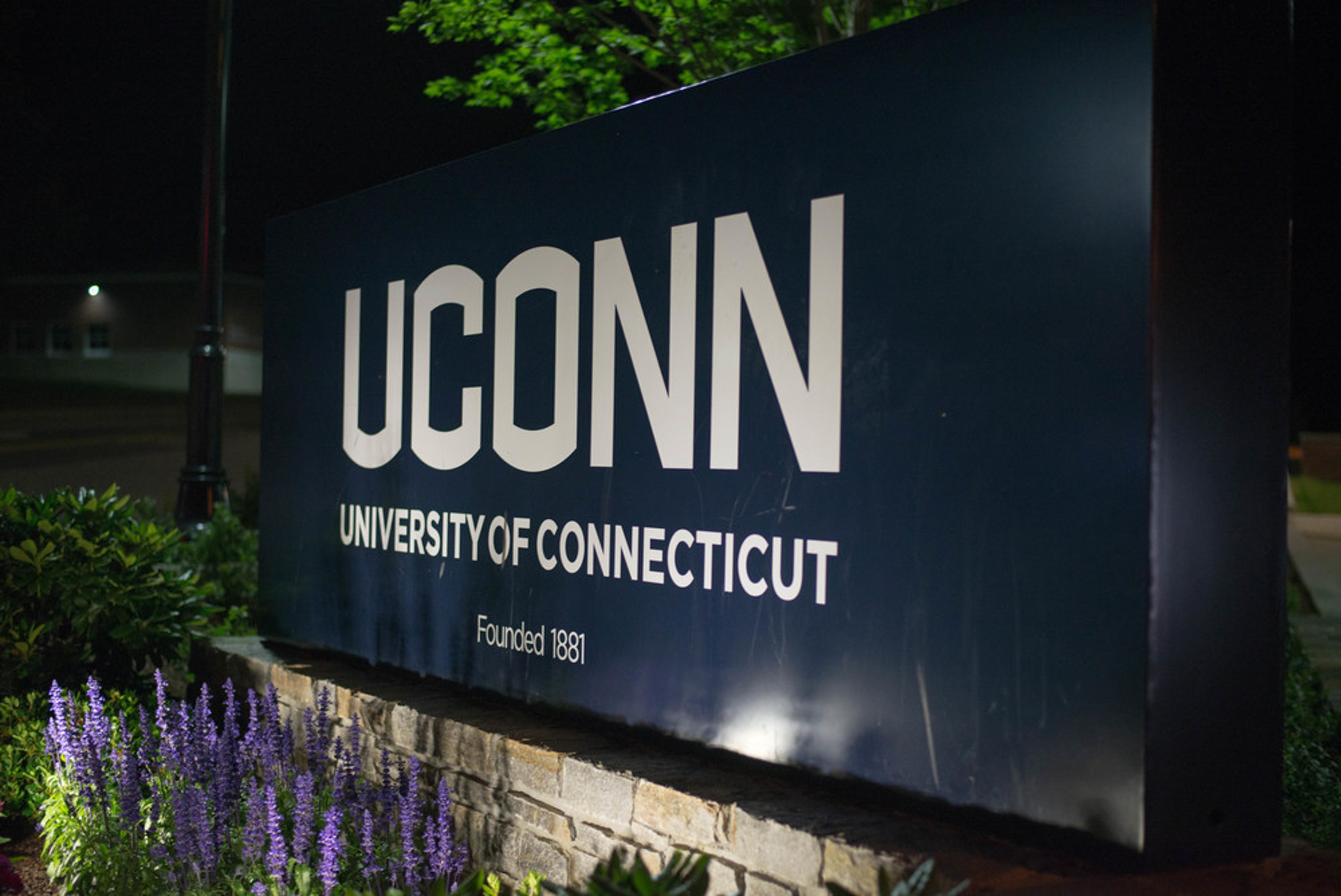 """Former University of Connecticut computer science and engineering lecturer and coordinator of freshman computing education Jeffrey Meunier resigned in January amid an investigation by the Office of Institutional Equity (OIE) that revealed that Meunier was having an """"amorous"""" relationship with an undergraduate student. (The Daily Campus/File photo)"""