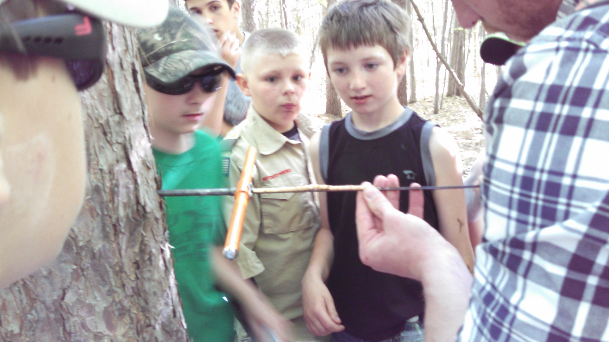Boy Scouts look on as a tree core is removed from a Red Pine