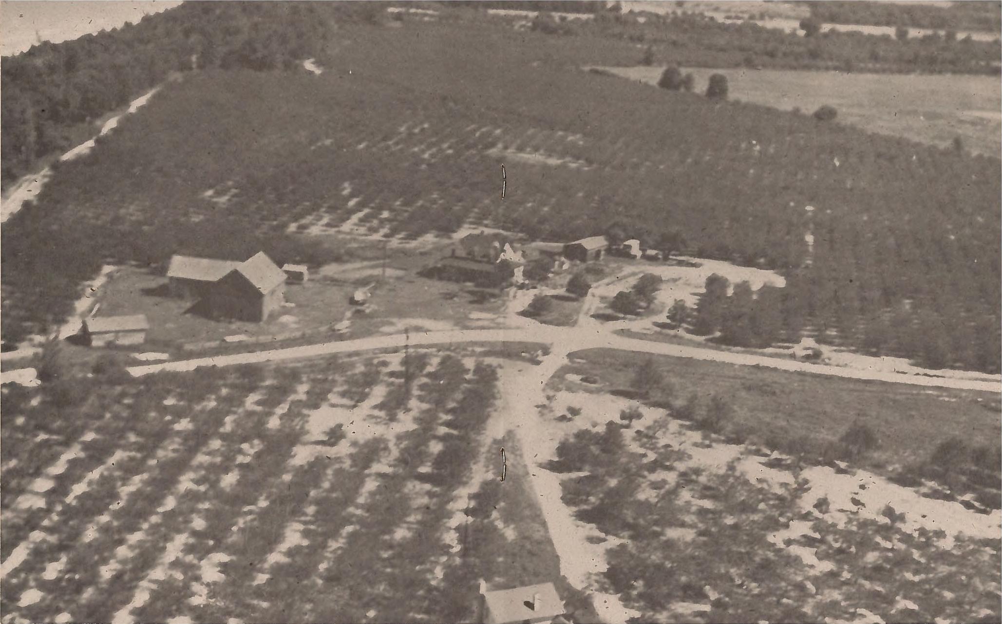 Juniper Beach cherry orchard, note Lake Michigan in upper left.