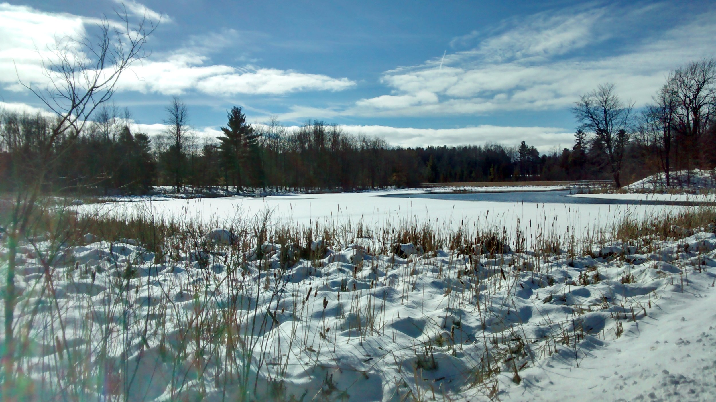 February at Gales Pond