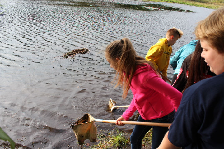 Environmental Education Events at Gales Pond