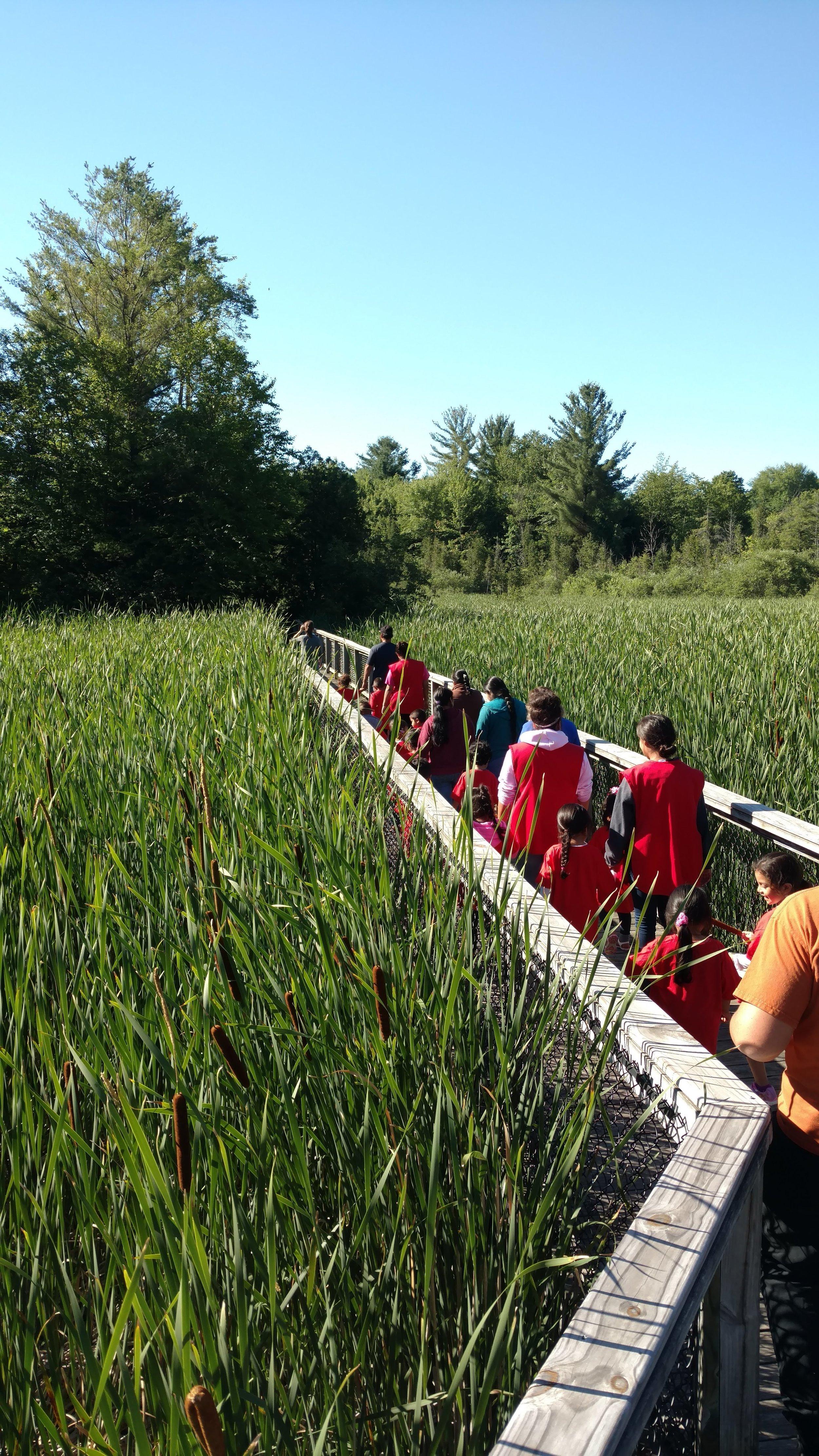 Environmental Education Events at Gales Pond