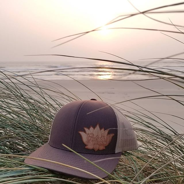 We found a perfect place to watch the sunset on the Oregon coast 💚 thought we'd show off our real woodgrain hats too. We're giving them away with every one gallon or more of, Mothers Milk. When you get yours, take a cool photo and show us where you like to explore🐚 . . .  #oregon #coast #beach #sunset #woodgrain #hats #organicfarming #organicgardening #notill #livingsoil #ReapWhatYouSow #GoliathGrow