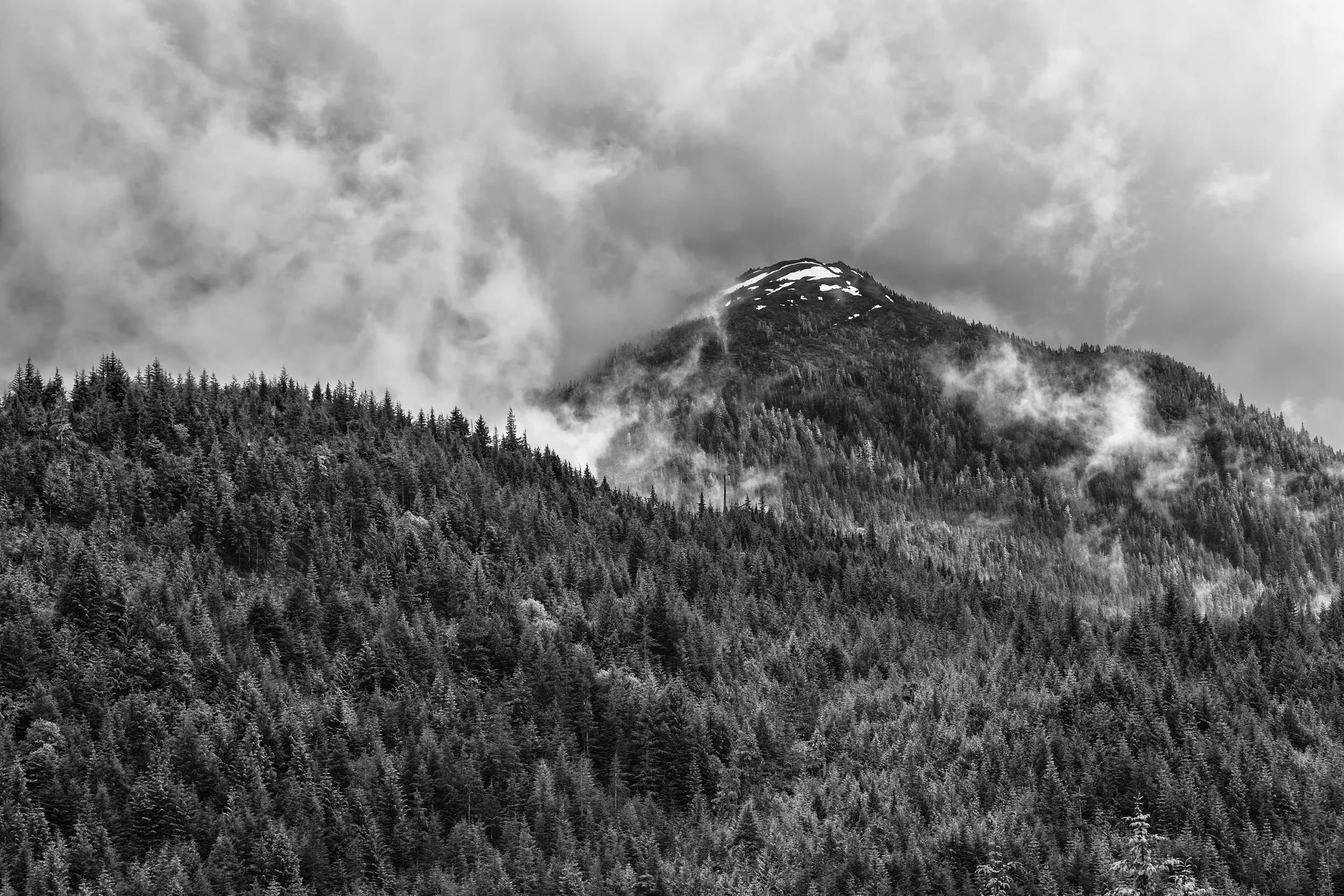 This shot looked good in color, but it was still falling flat. It wasn't evoking the same response as I felt while seeing it thru my viewfinder. But when I converted it to black and white, all of a sudden it popped and I got an amazing image. Shot with Canon 5d Mark II