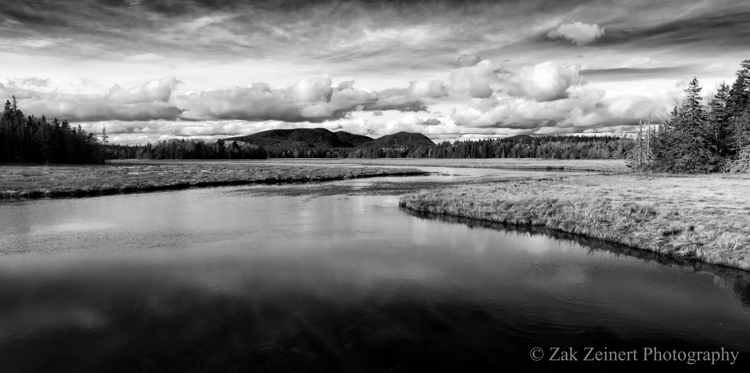 A beautiful pond I saw on the way to Bass Harbor. It looked good in color, but even better in Black and White