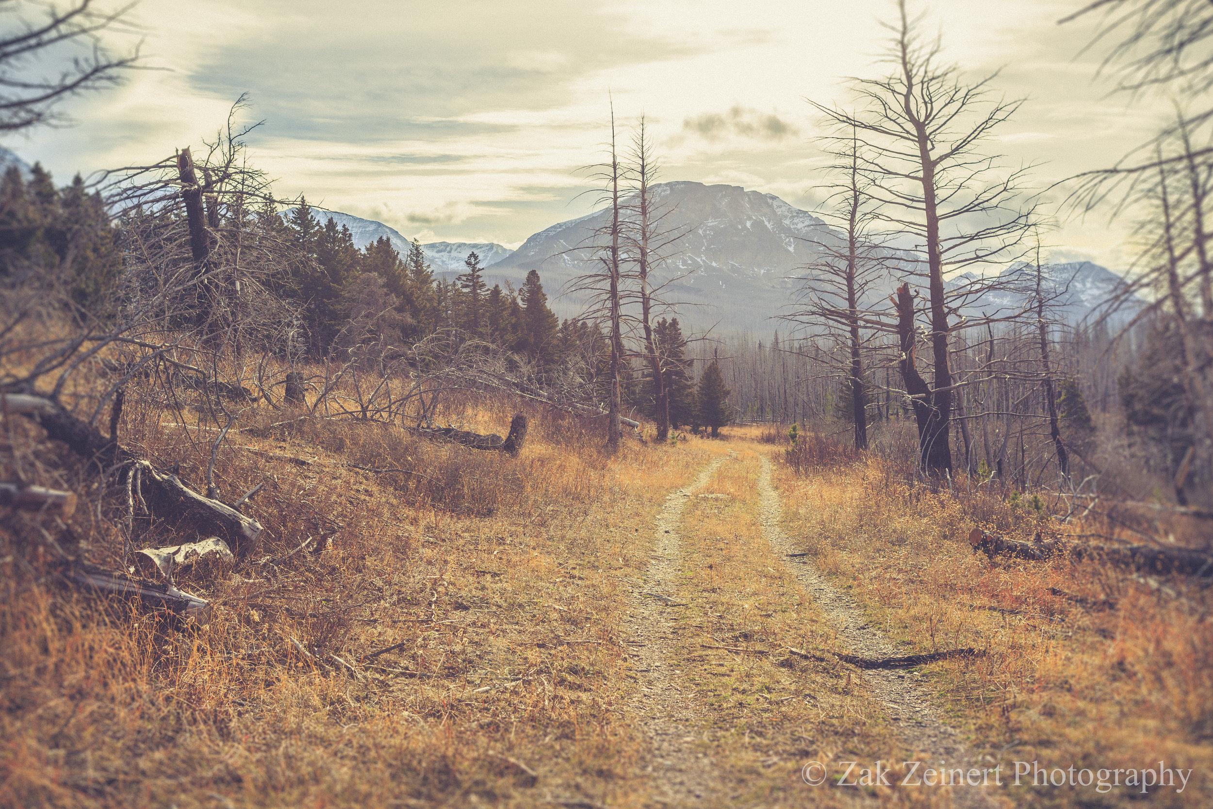 Hiking around St. Mary Lake