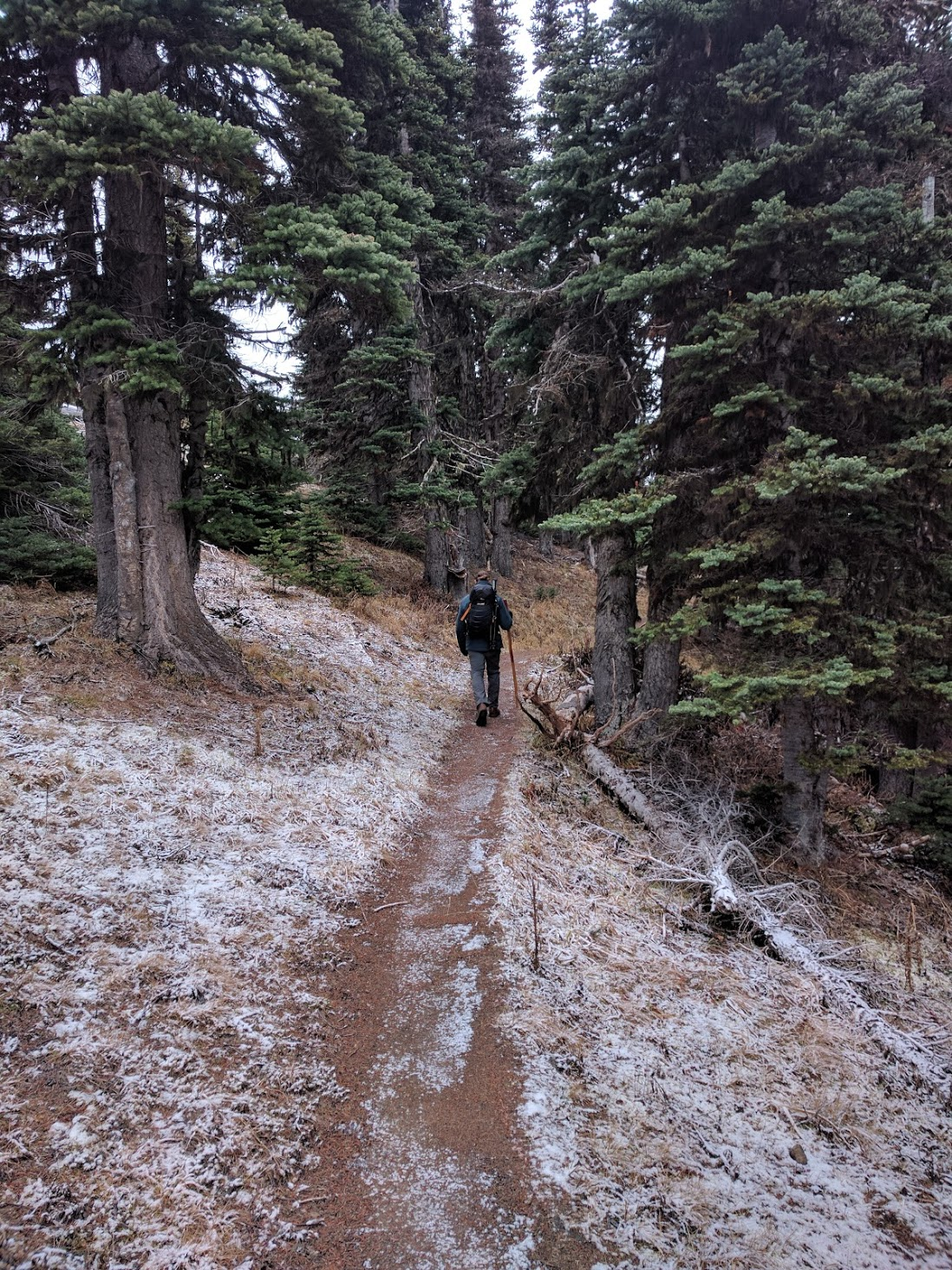 Hiking to Deer Park Campground. Photo courtesy of Jordan Long