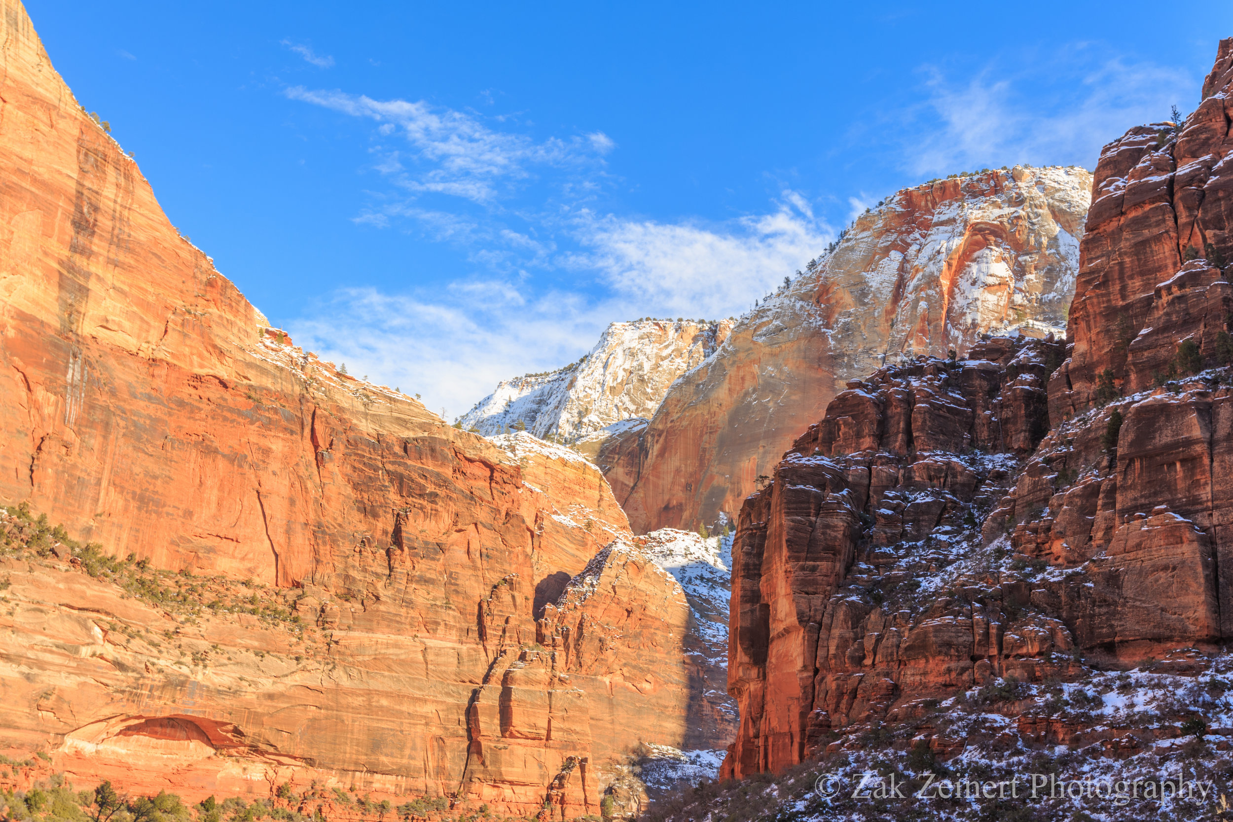 The cliff walls in Zion