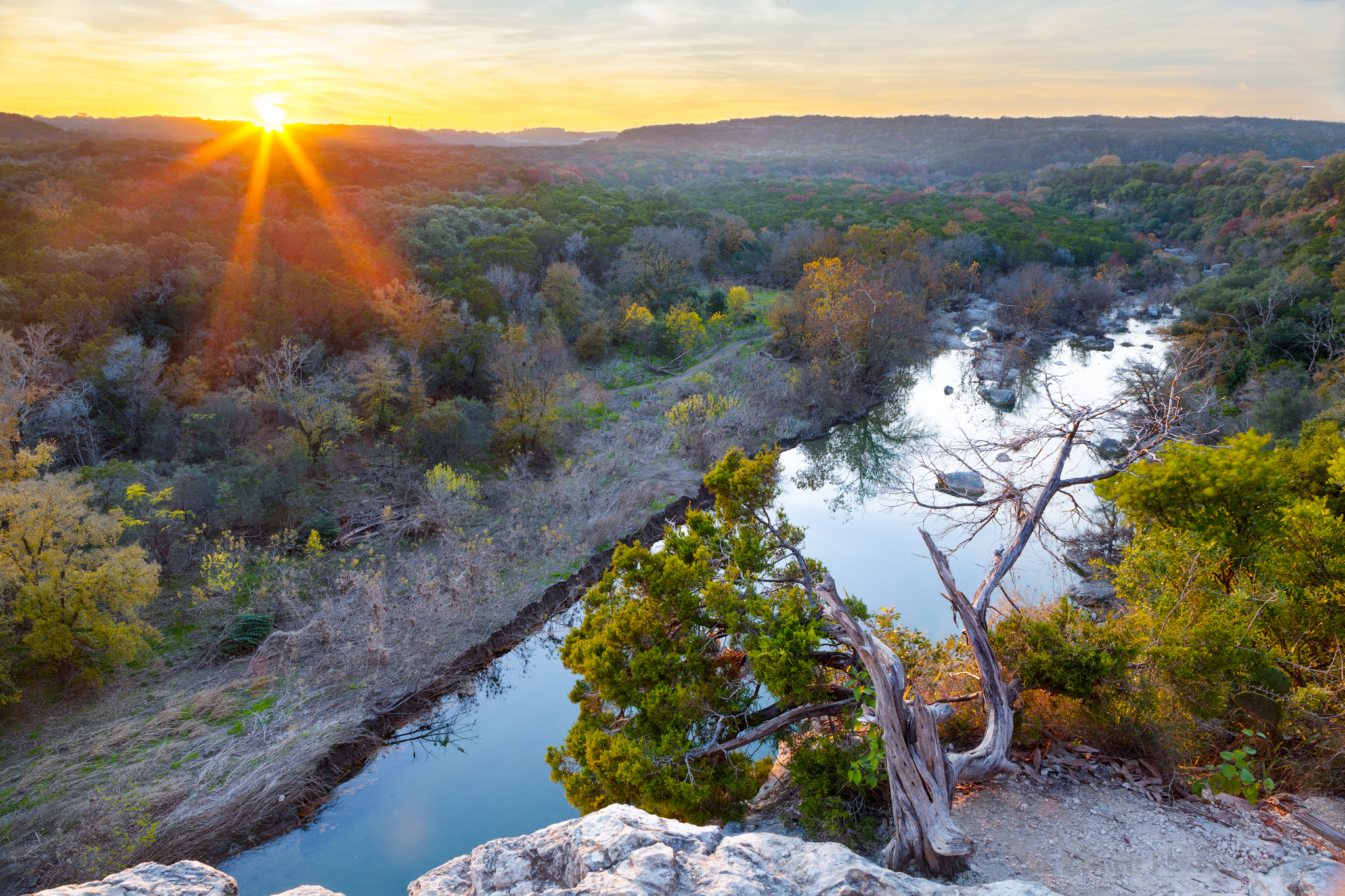 Natural Starburst captured in-camera over the Greenbelt in Austin, Texas