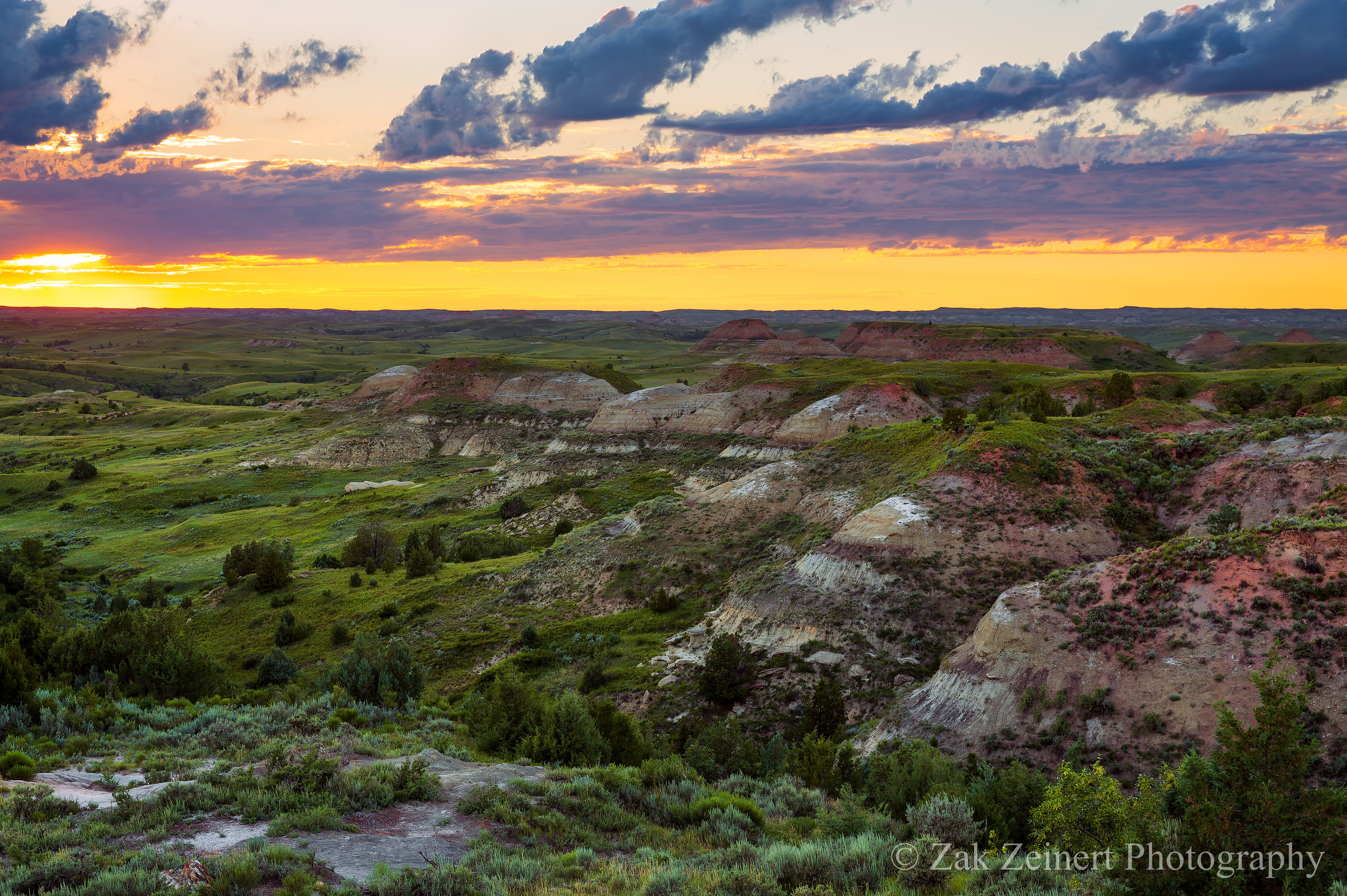 Sunset over the Petrified Forest Loop