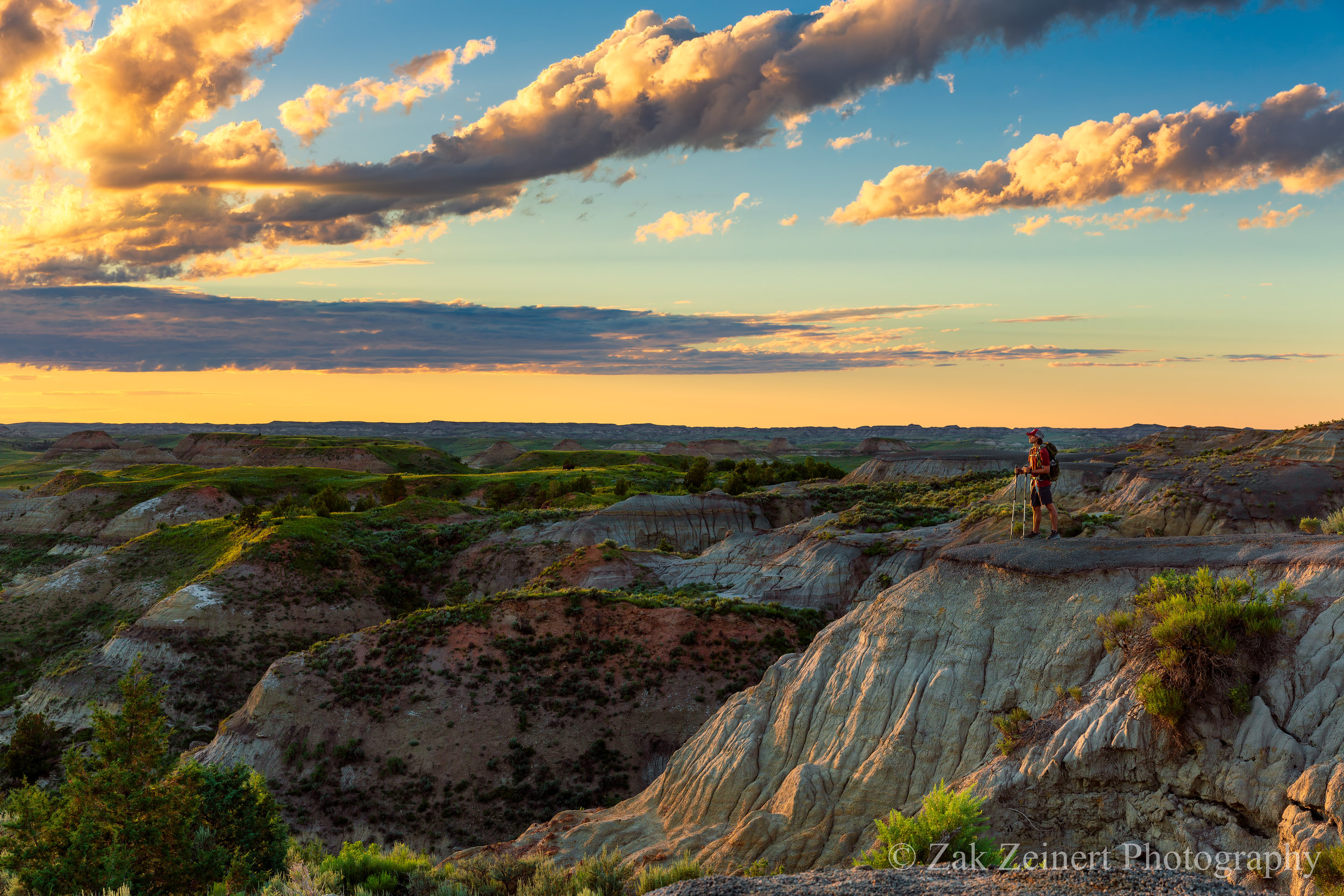 Hiking along the Petrified Forest Loop