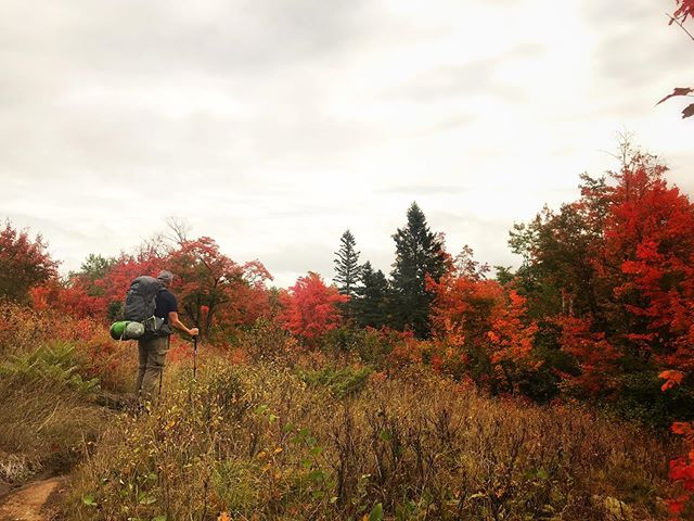Another shot from Isle Royale National Parks! The weather got progressively colder and more rainy as the trip went on, but it helped to keep things interesting. Side note: is my dad a good trail model or what? #isleroyalenps #isleroyalenationalpark #isleroyale #autumn #backpacking #michigan #visitmichigan #michiganawesome #michiganoutdoors #puremichigan