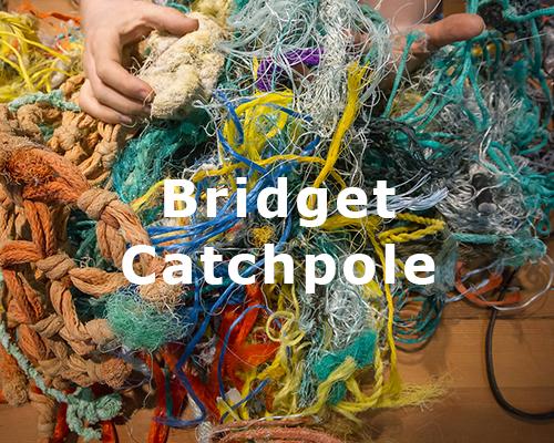 bridget catchpole.png