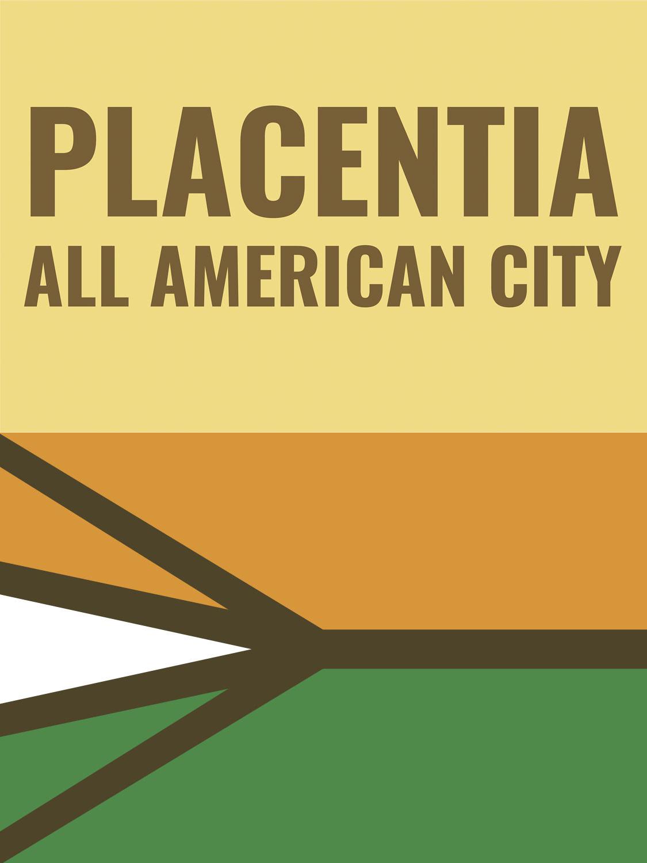 City Flag Redesign