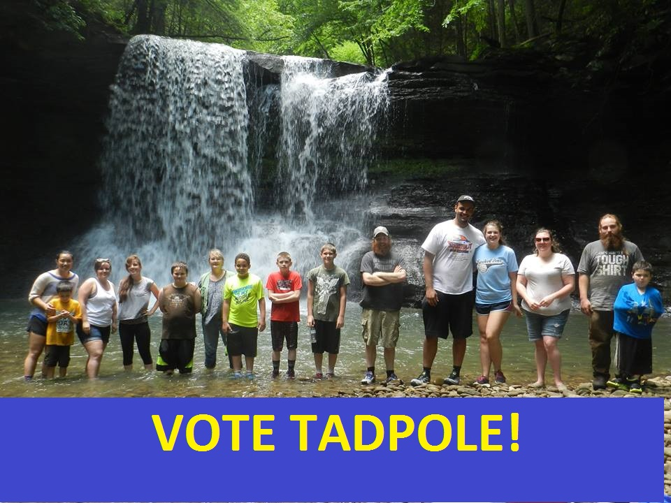 Tadpole Vote.jpg