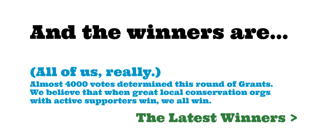 2019-winners-front-page.png