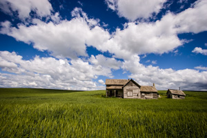 Tim_Grey-Palouse-02.jpg