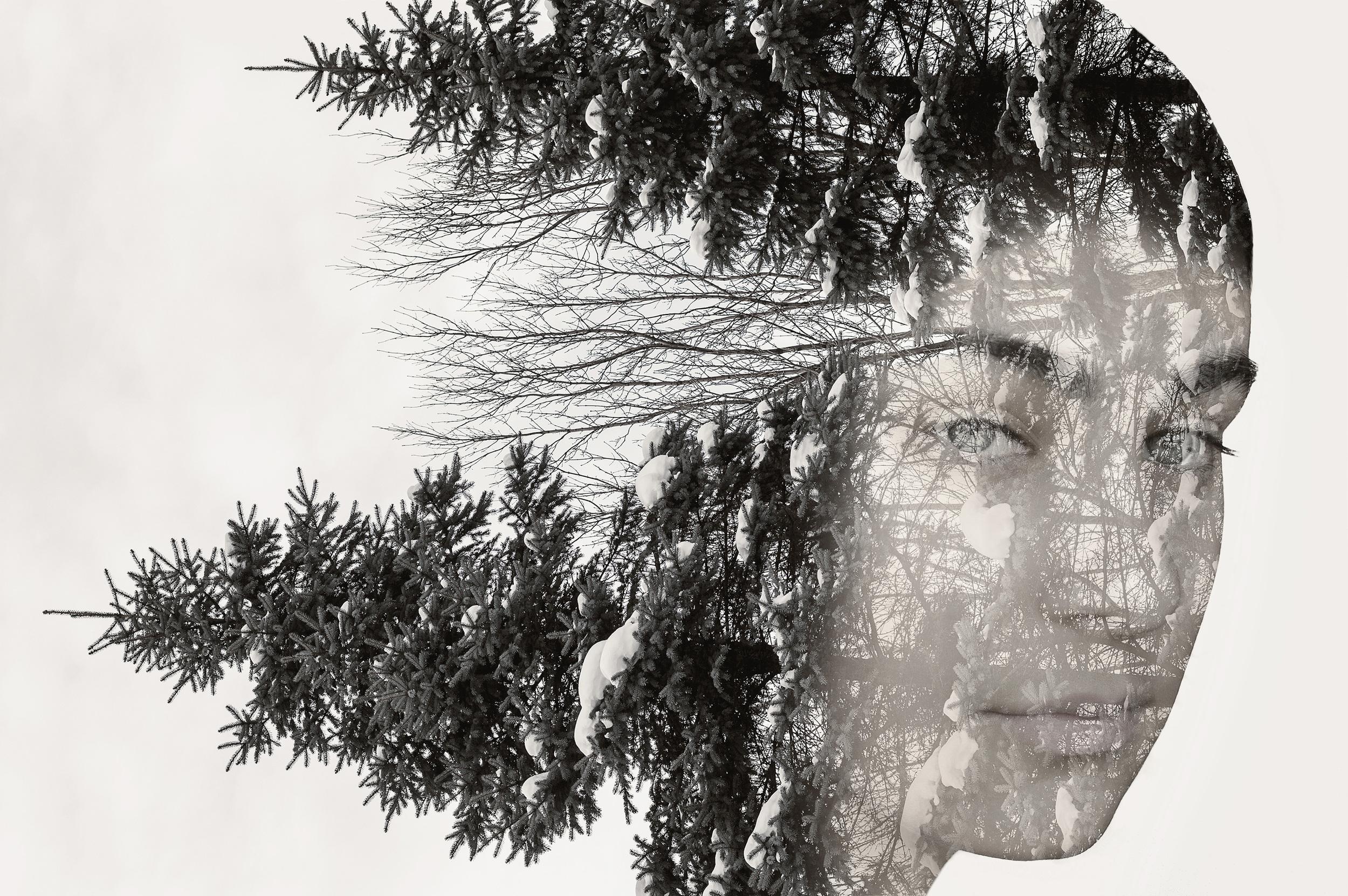 Evergreen Queen © Deena Roth Photography