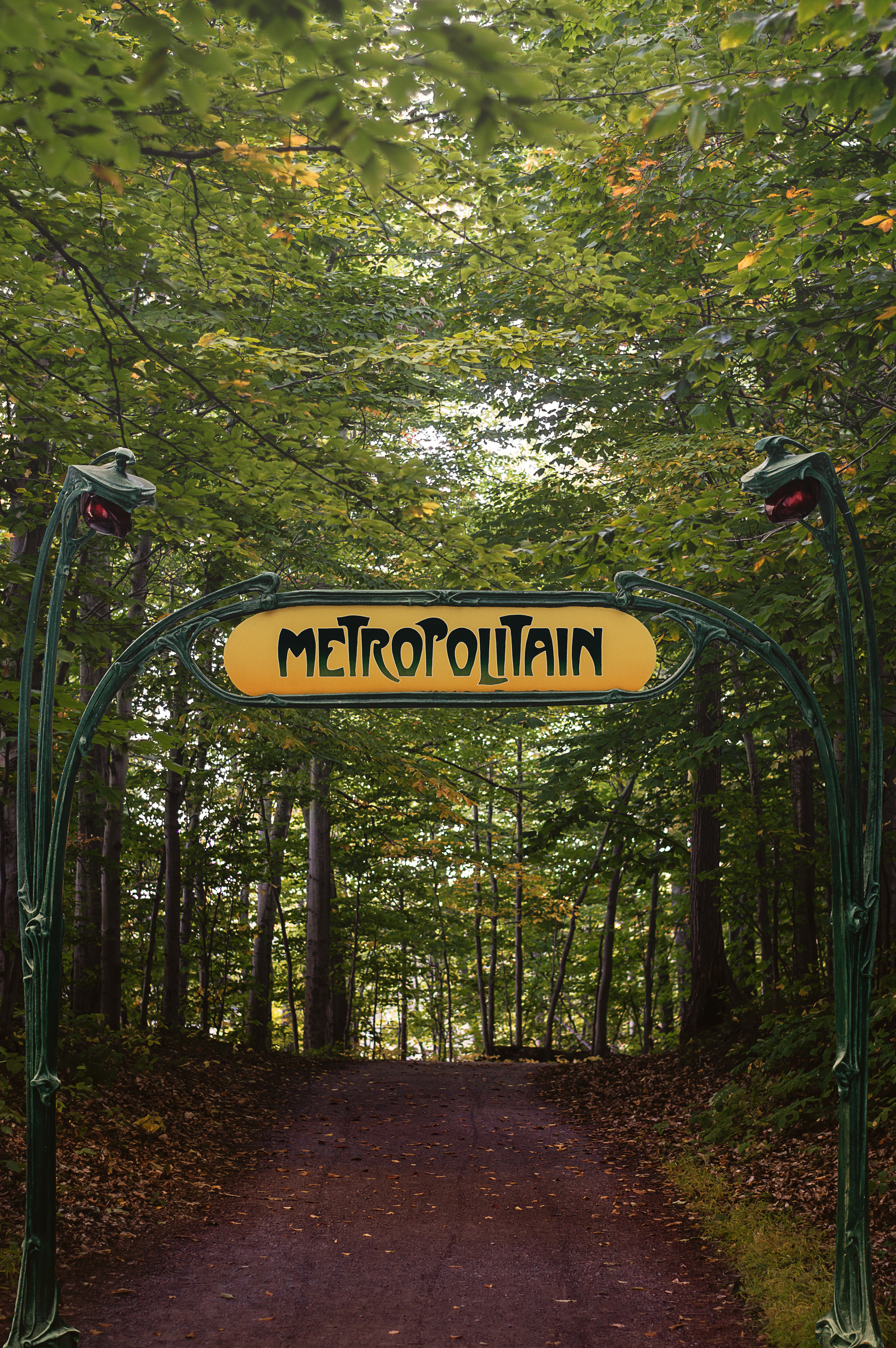 Metropolitan Wilderness © Deena Roth Photography