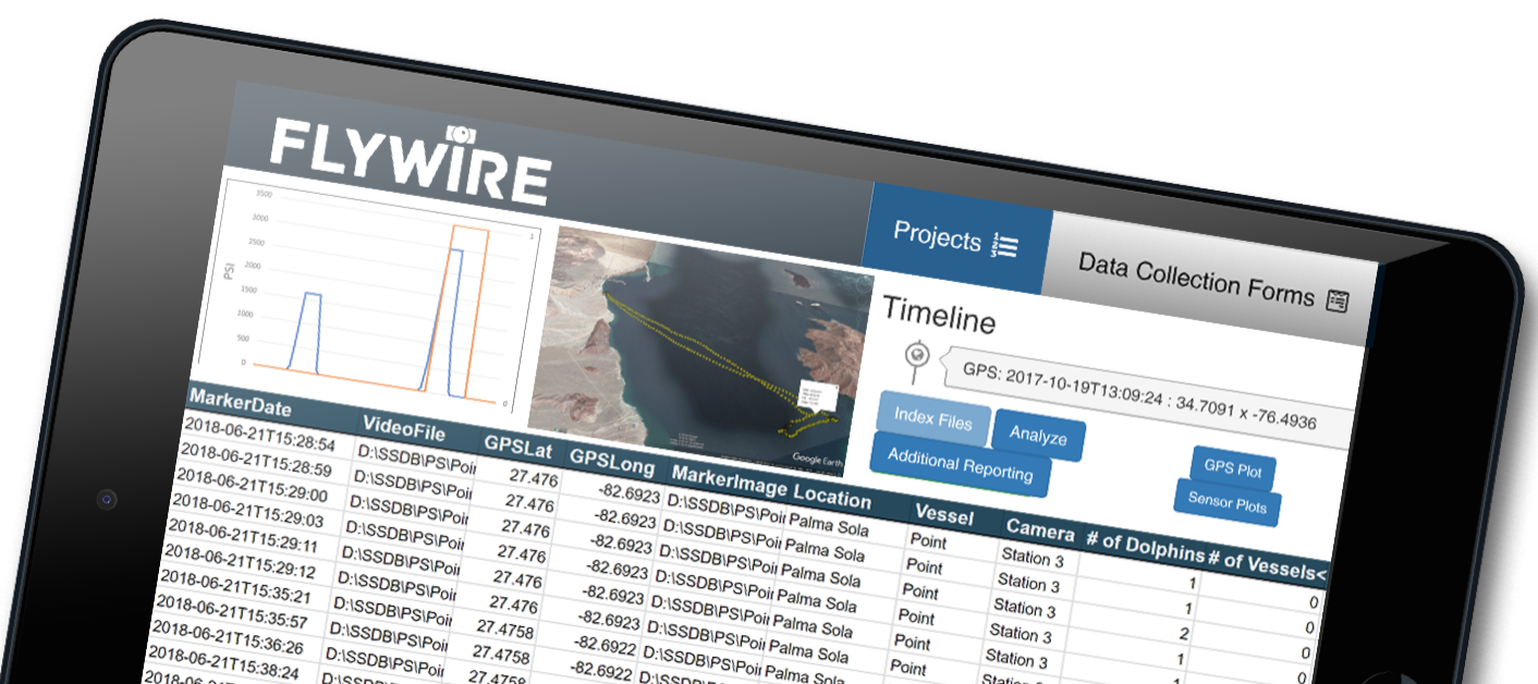 REPORT - FlyWire provides regular reporting to give our stakeholders continuous insights on supply chain performance.
