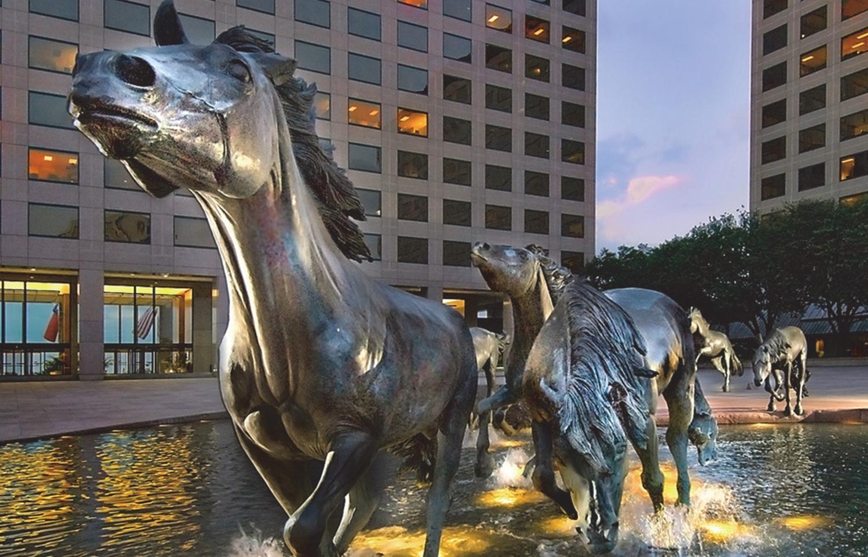 Las Colinas Mustangs.jpg