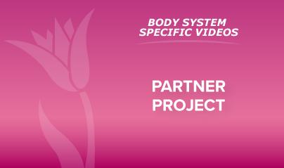 1 - Partner Project
