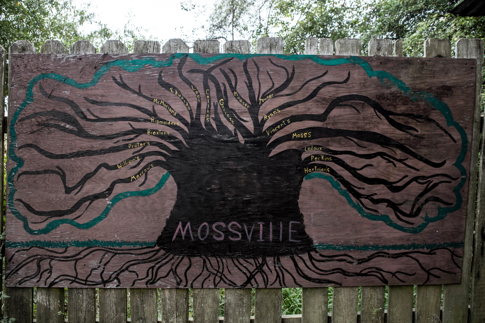 MOSSVILLE_PHOTO_6D_TREEAFRICA.jpg