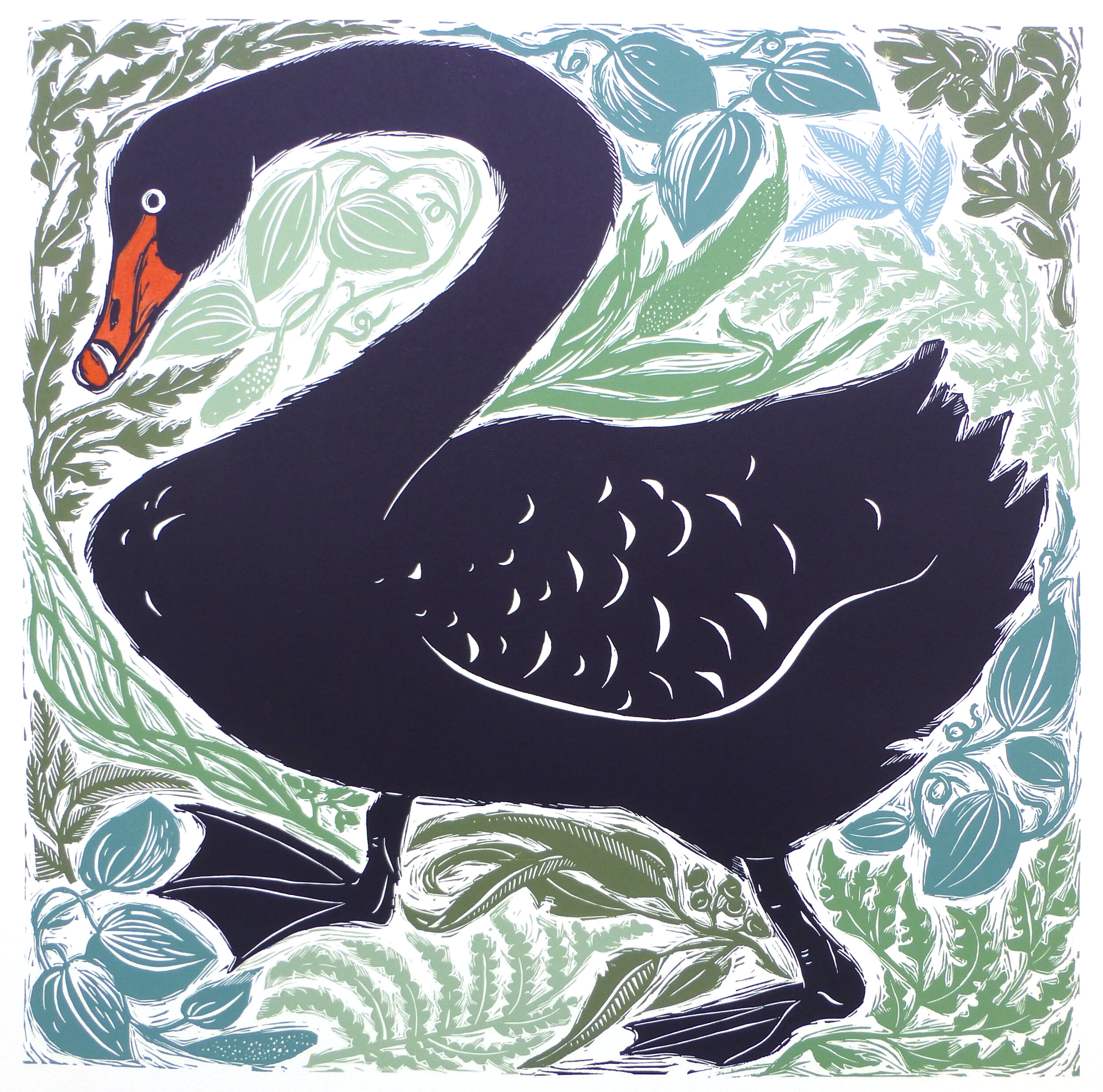 Black Swan Amongst Foliage   Multiblock linocut with hand colouring, 2019  Edition of 10  Image size: 55 cm x 55.5 cm  Paper size: 78 cm x 72 cm  $350 unframed