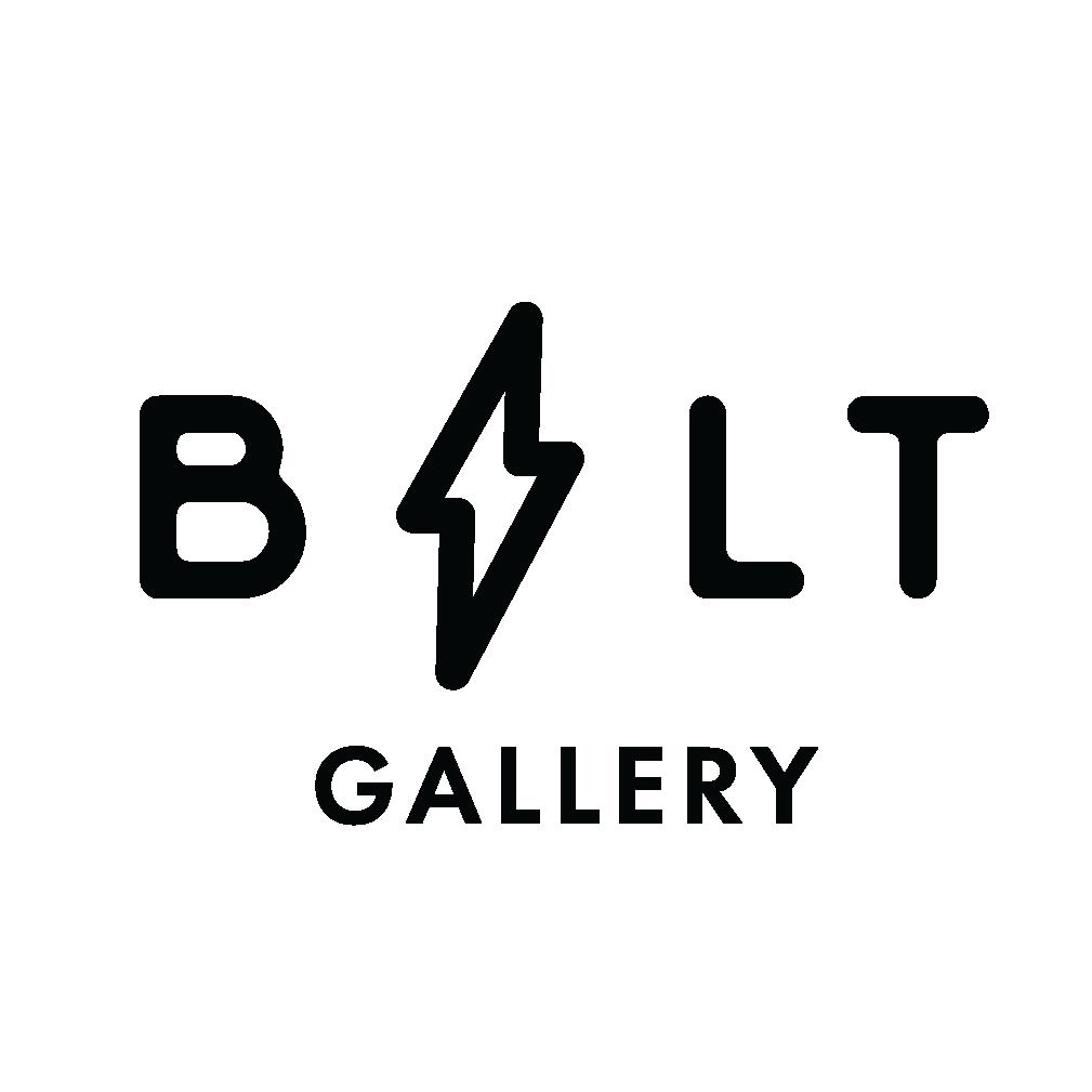 BOLT logo-B-03.jpg